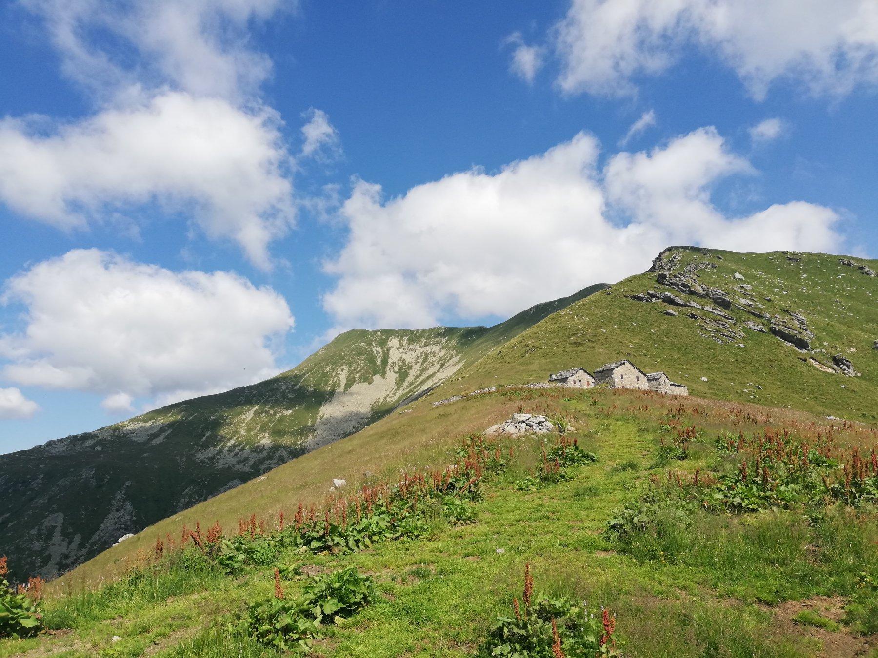 Nei pressi dell'Alpe Frigerola a sinistra la Vaccarezza(Castel Balanger) mt.2203 e l'Angiolino mt.2168