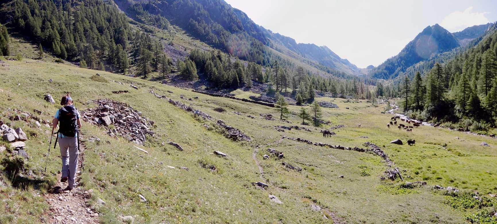parte bassa del vallone