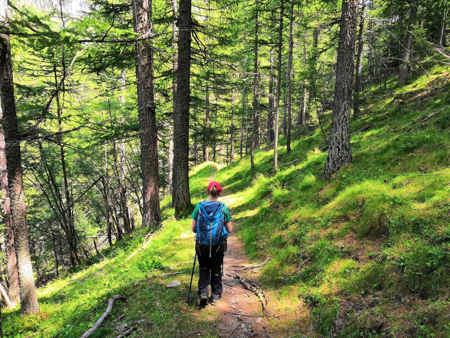 Ormai prossimi a Laval, nuovamente bel sentiero nel bosco