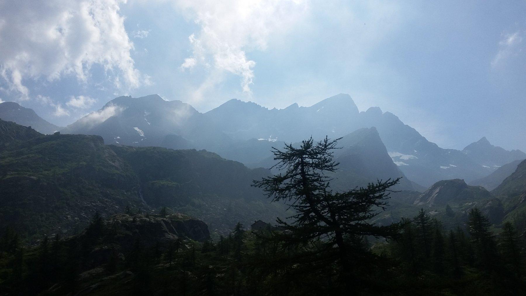In discesa dall'Alpe Vasinetto: passo Lago Gelato, col Braias, col Gialin, Gialin
