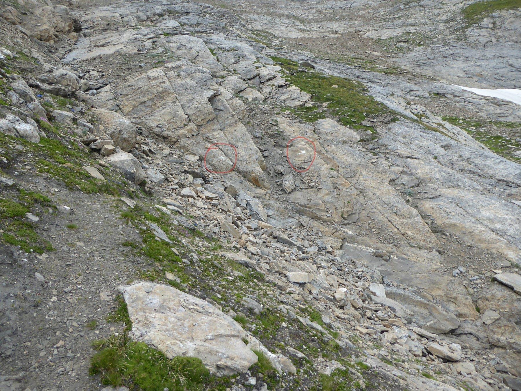 la doppia freccia bianca a 2840 metri
