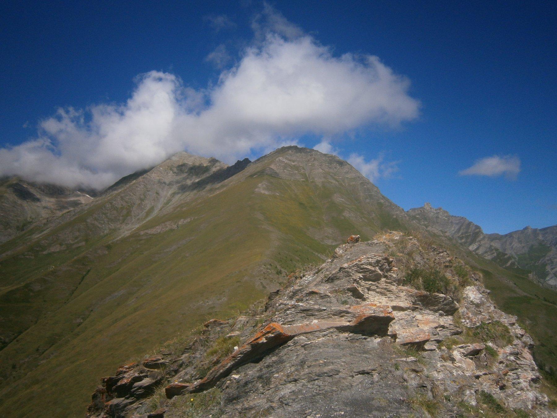 cima di Bardia dal Peyron