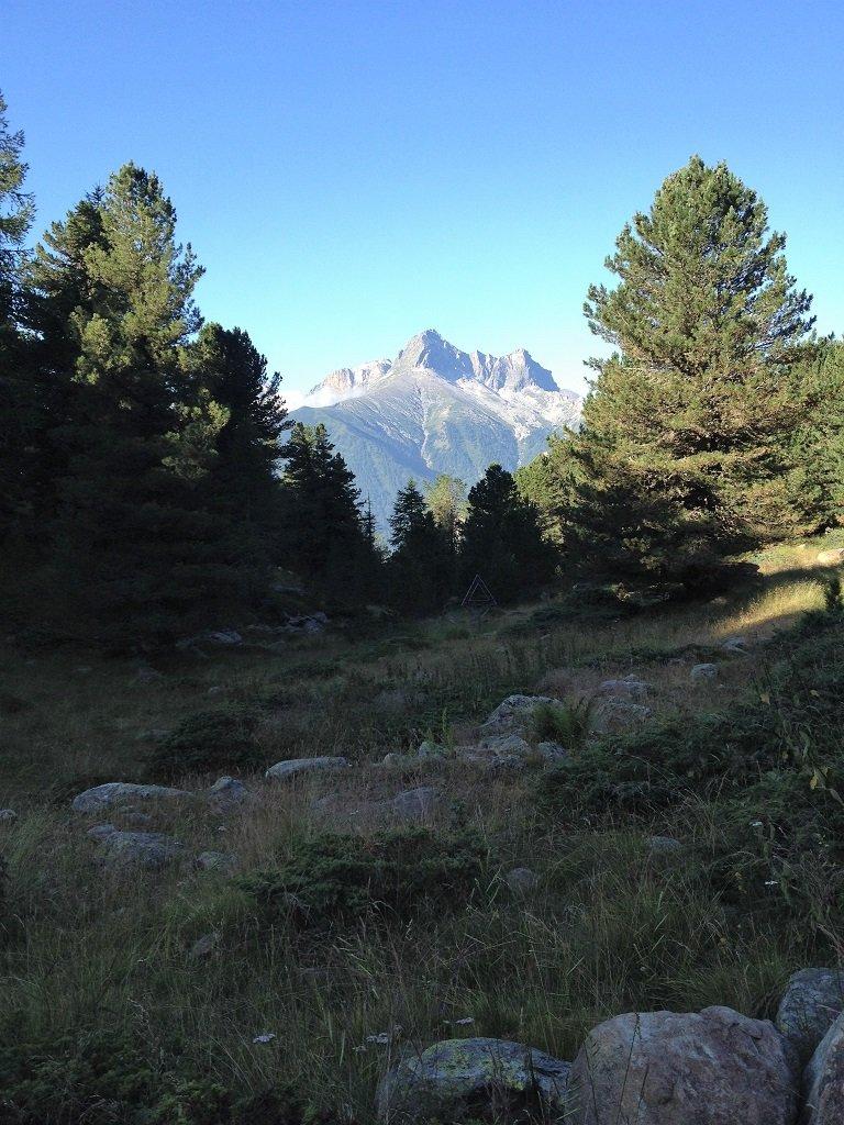 Uno sguardo sul Pelvo d'Elva