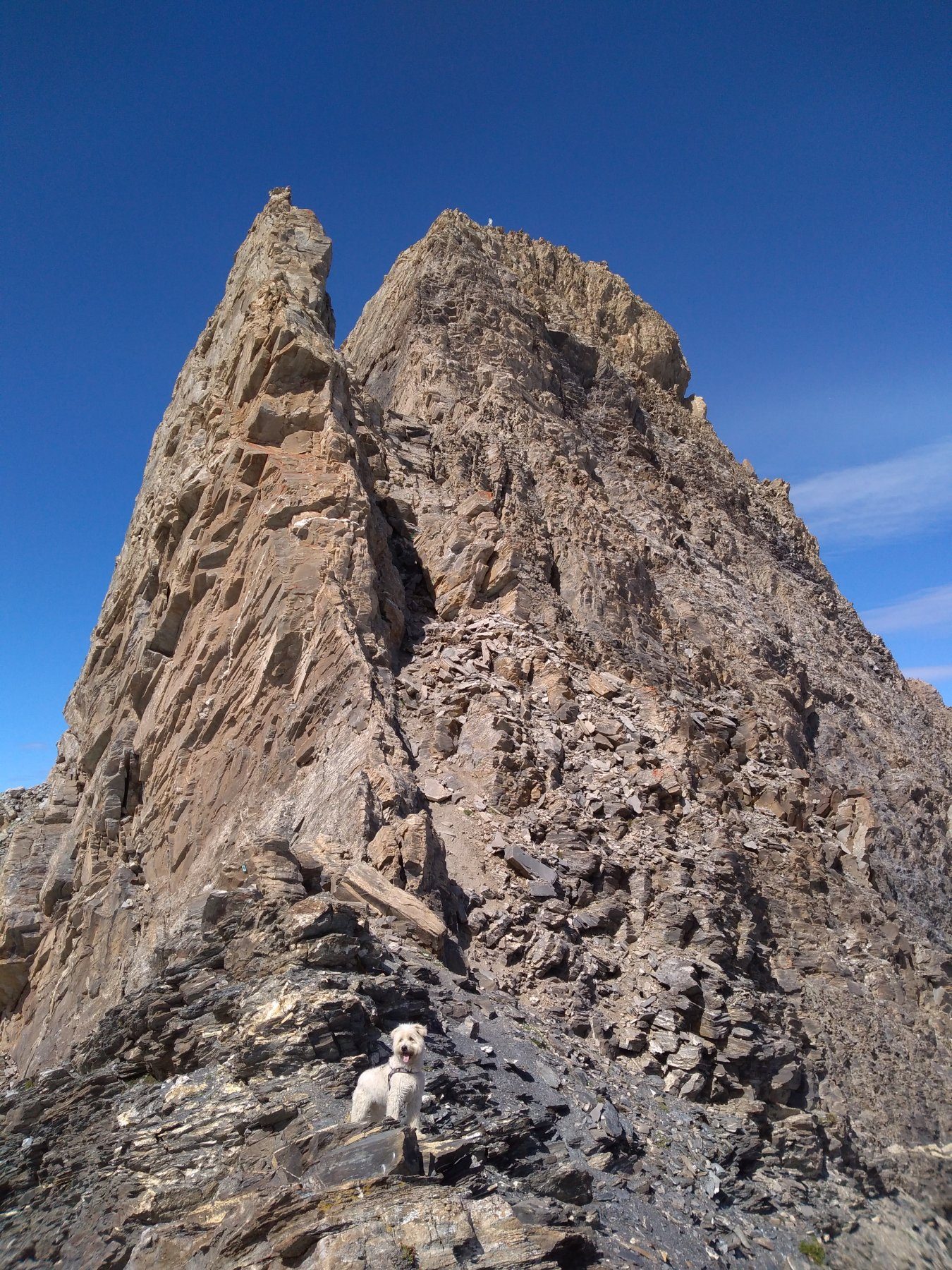 Buck e la cresta sud-est del Pic d'Asti