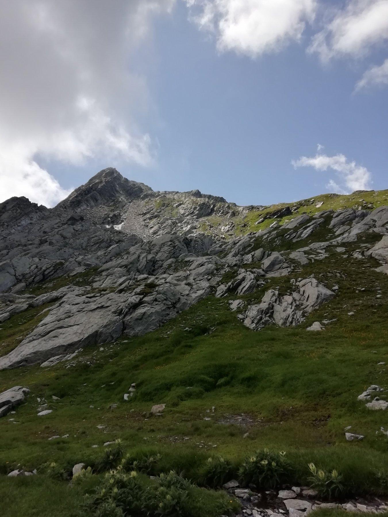 Marzo (Monte) da Outre l'Eve per la Valle della Legna 2019-08-14