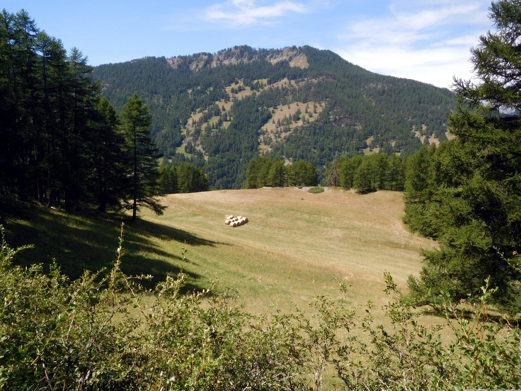 La cima del Bucher vista dal Pierre Dimanche