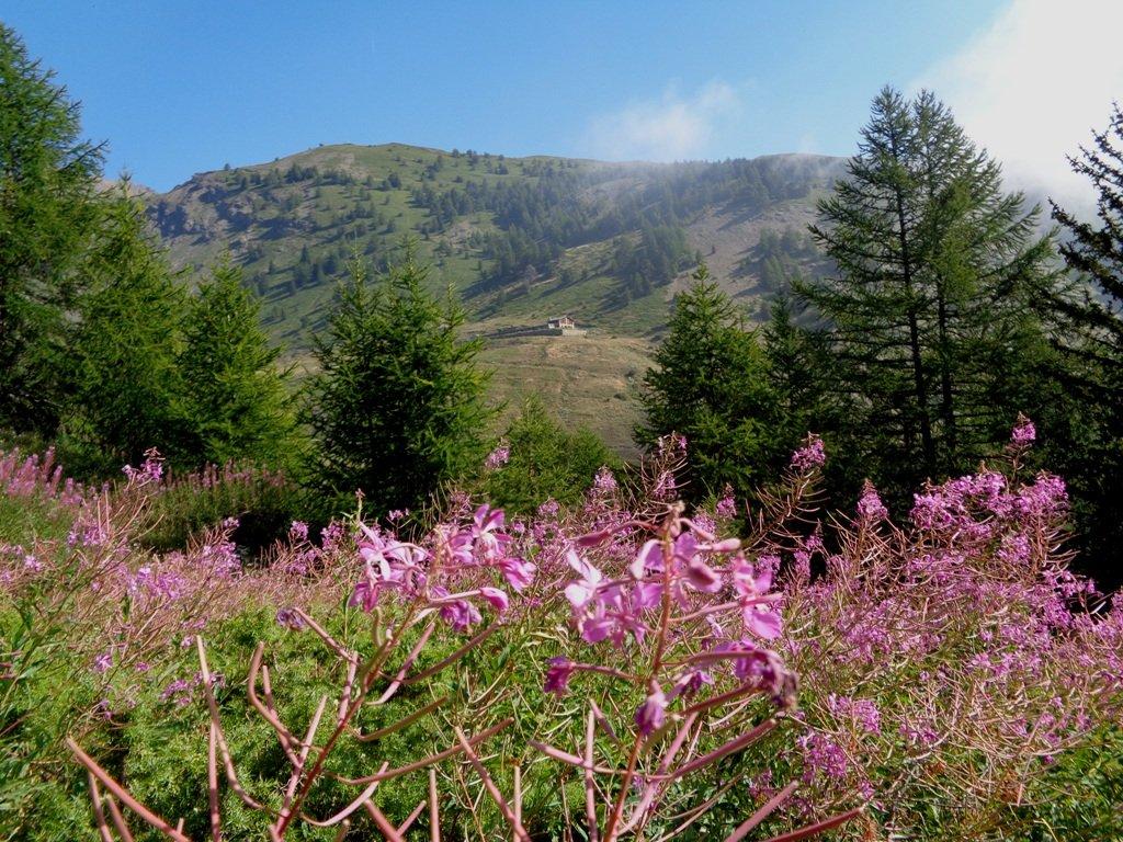 Al centro l'Alpe Loe'