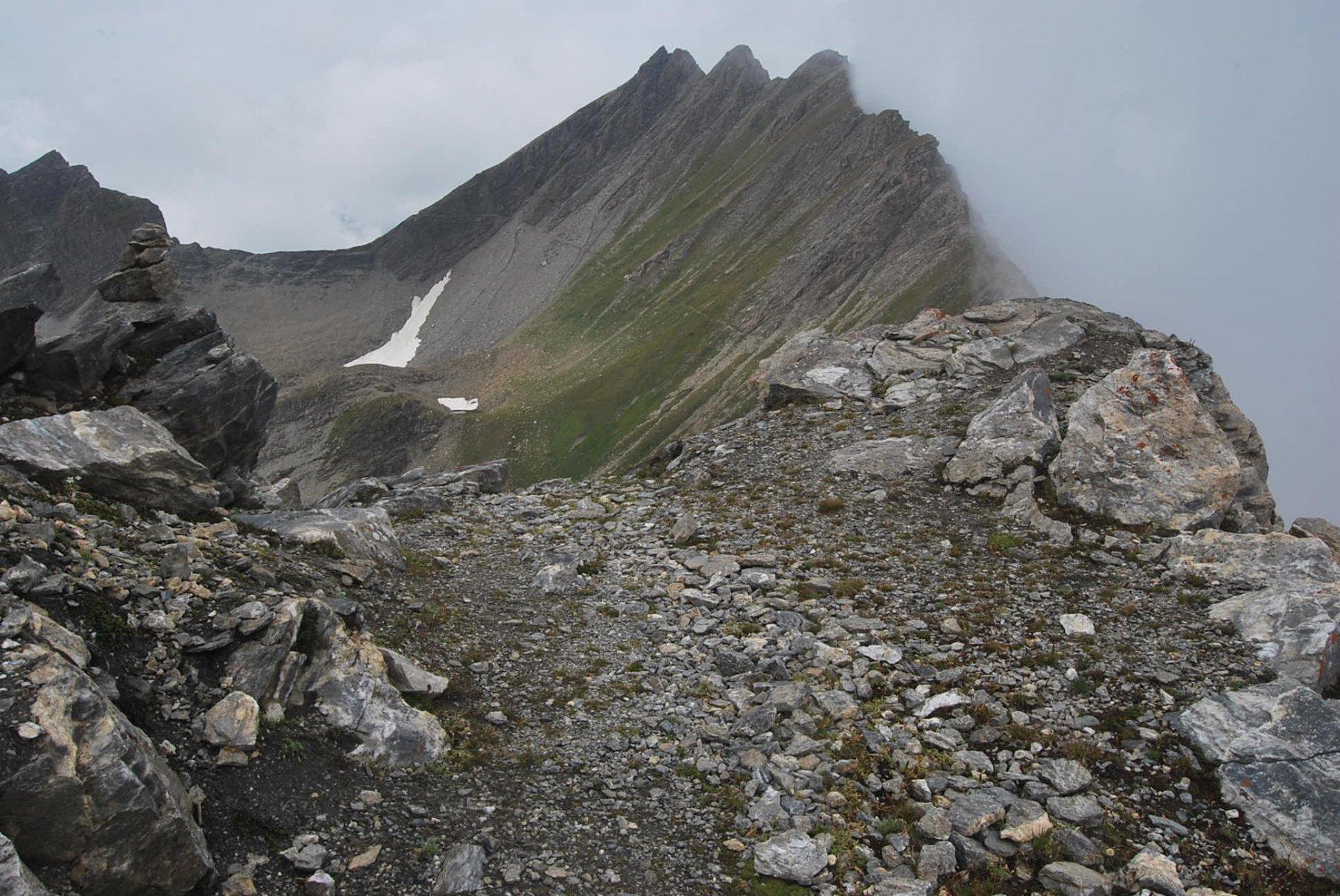 L'arrivo al Col des Charmonts; sullo sfondo ben visibile il Colle del Berrio Blanc ed il sentiero in costa. Questo è stato anche il punto di ritorno