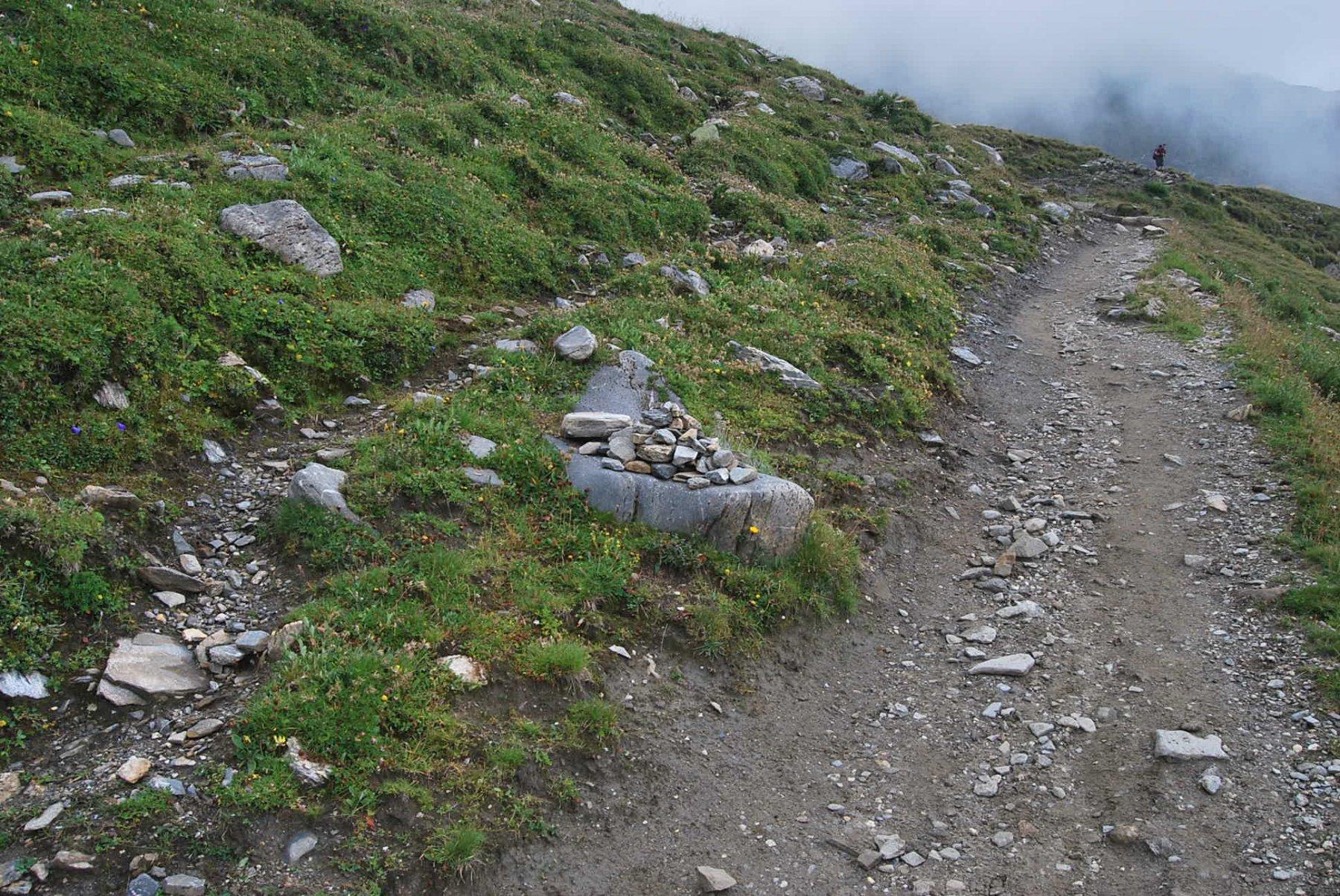 L'unico segno ad indicare lo stacco per il Col di Youla dal sentiero TMB. La vera evidenza è la traccia del sentiero che entra nella Comba des Vesses