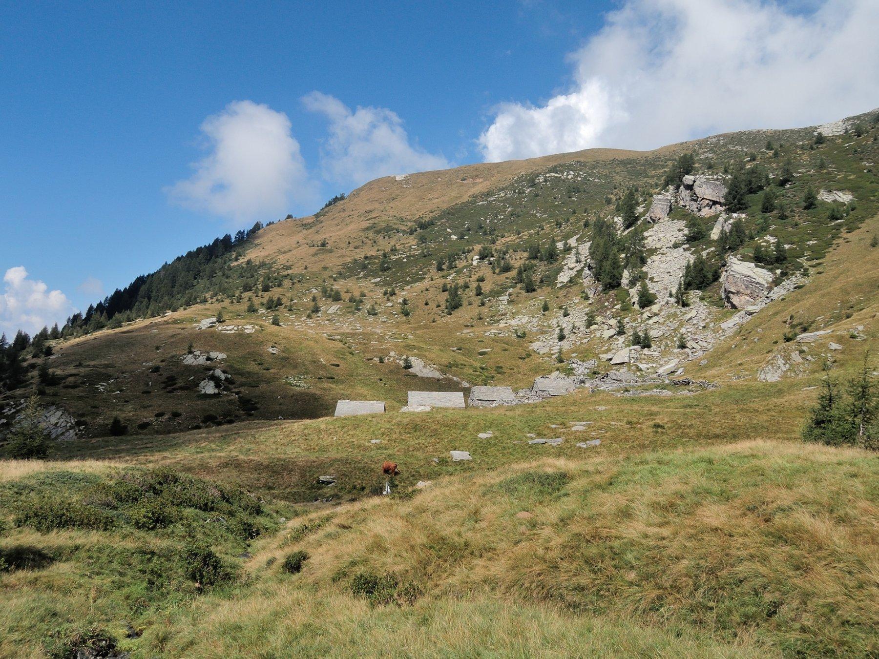 Alpe Forgnone