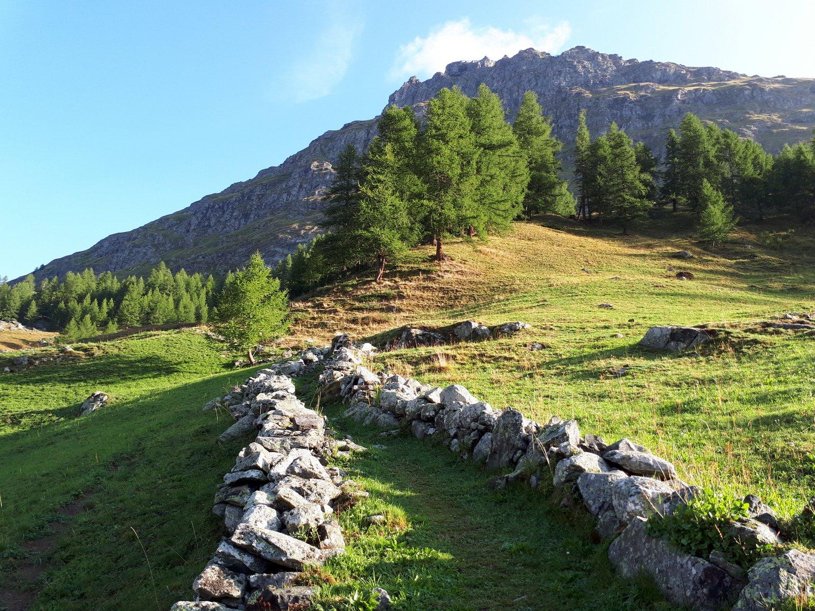 Tratto di sentiero 7B appena oltre l'Alpe Moos