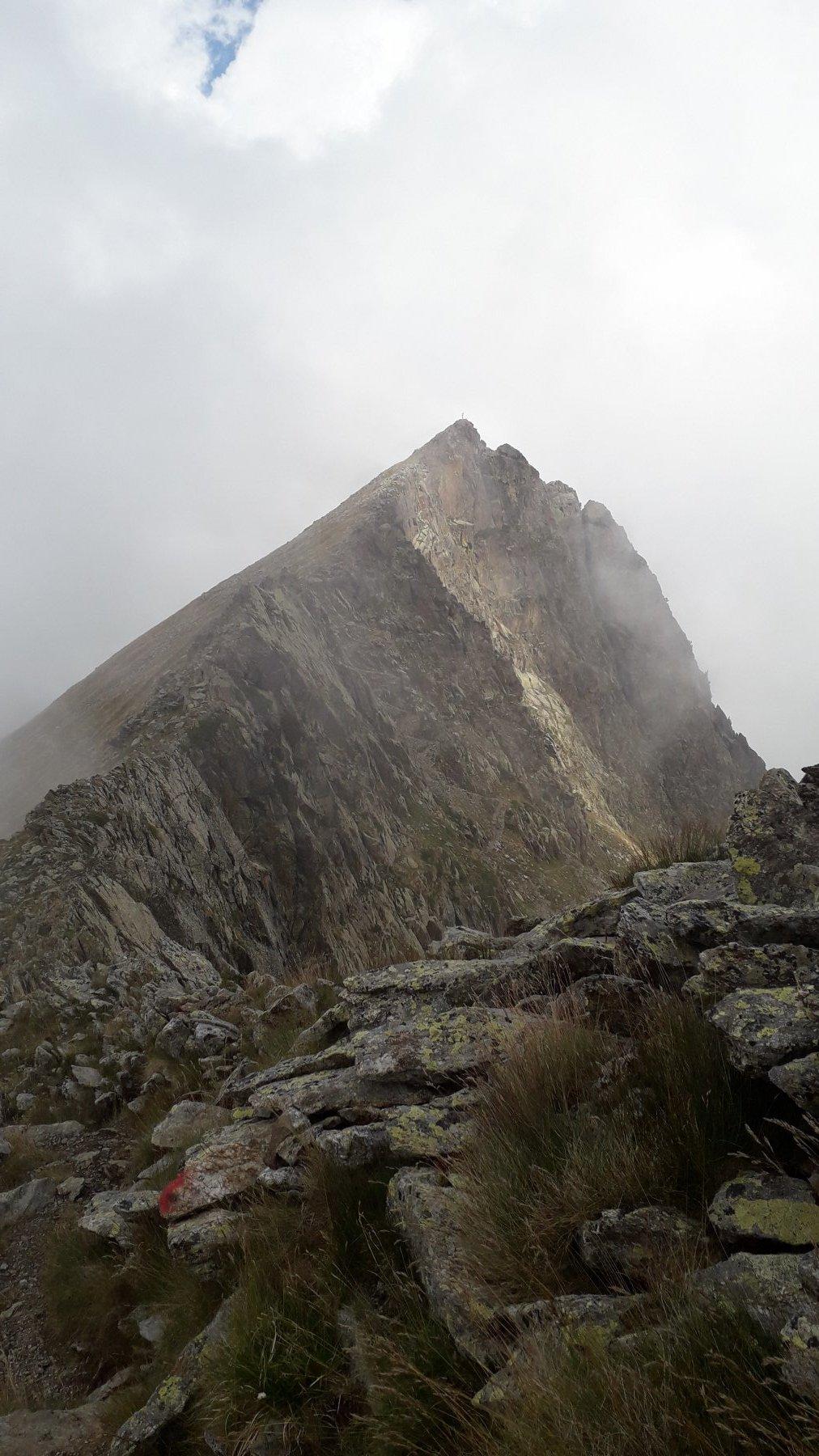La guglia vista dalla rocca