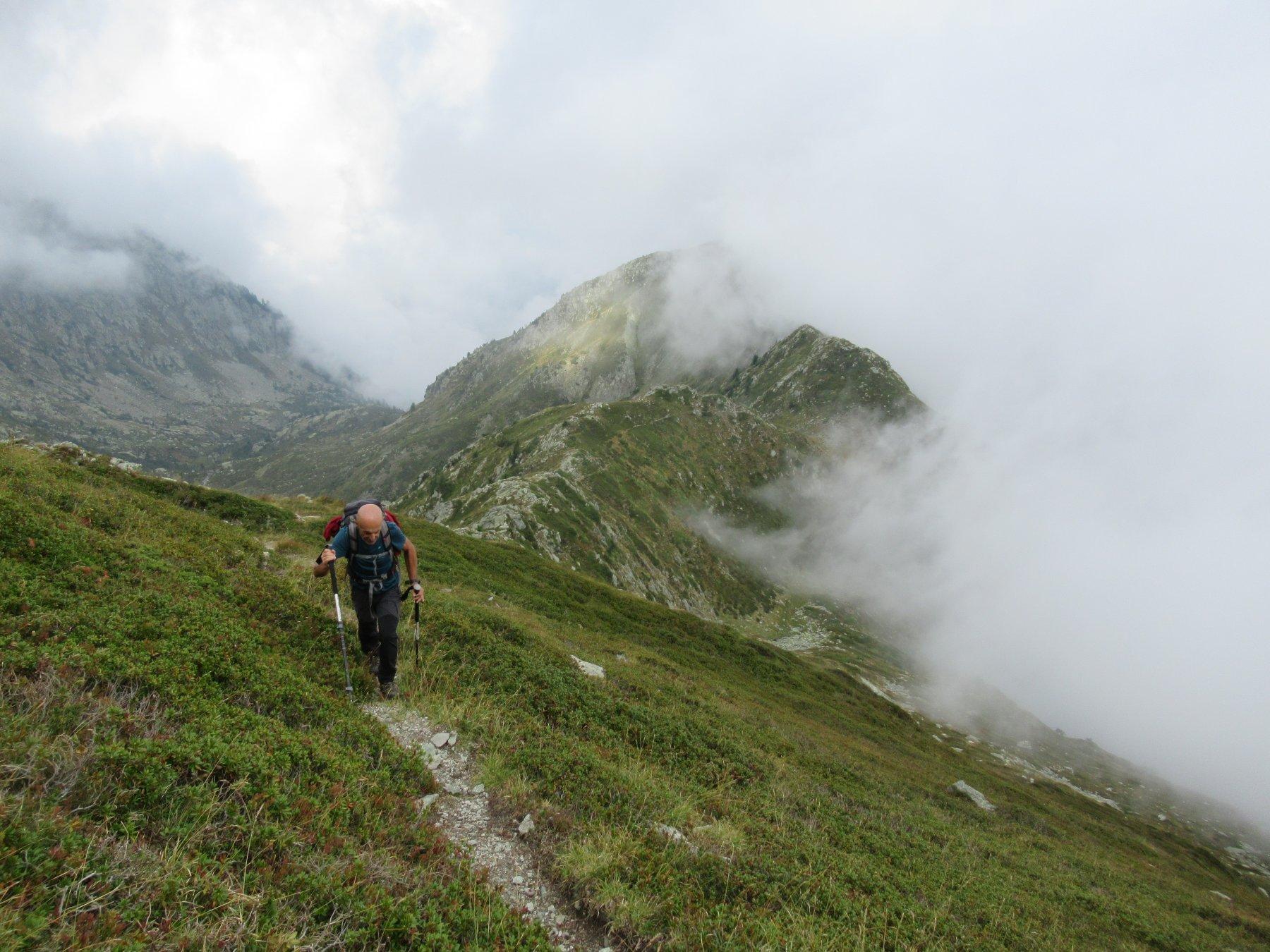 Ormea (Pizzo d') da Valdarmella, anello per Colla di Termini e Costa Valcaira 2019-09-05