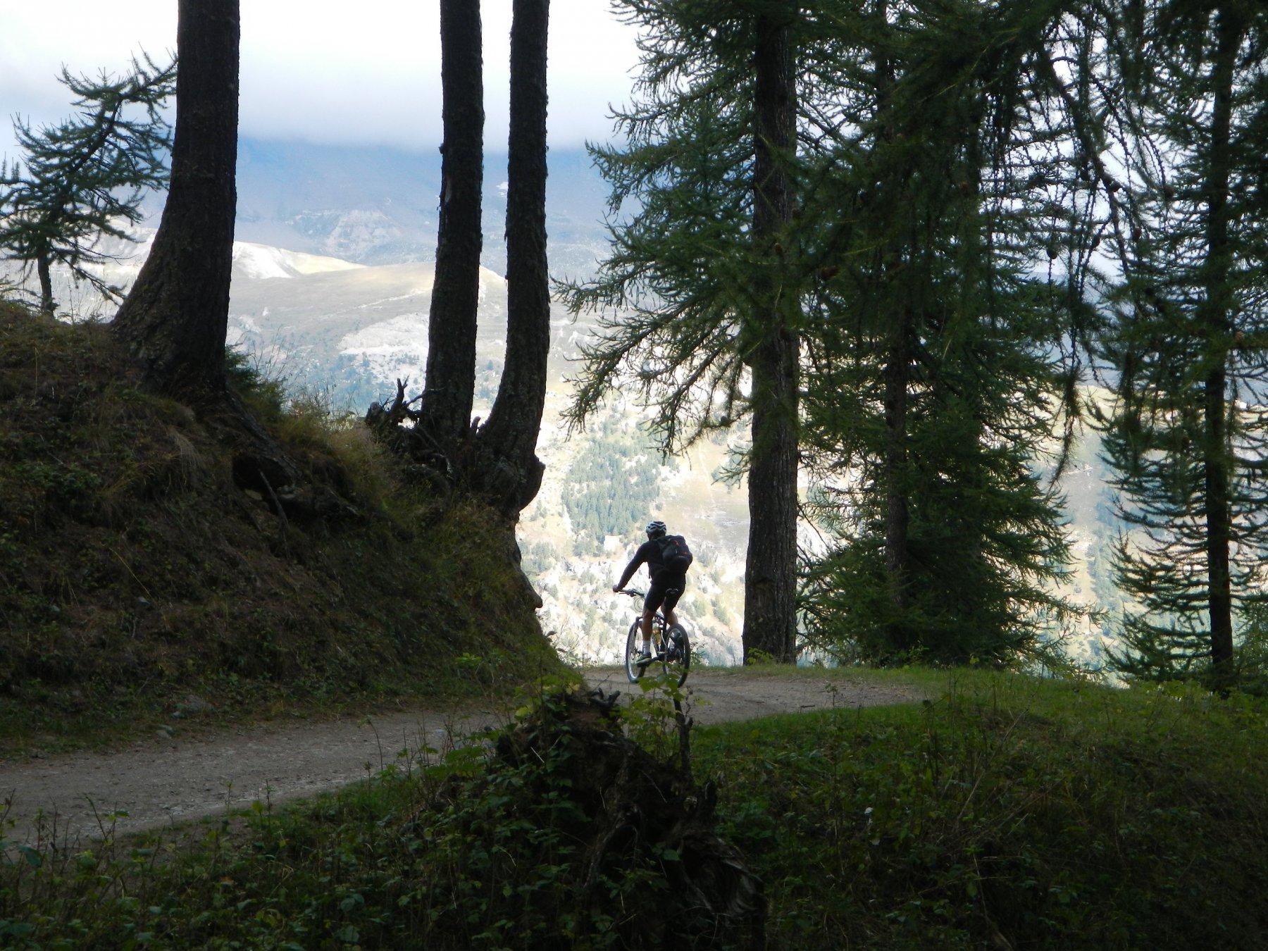 in salita verso l'Alpe Arguel