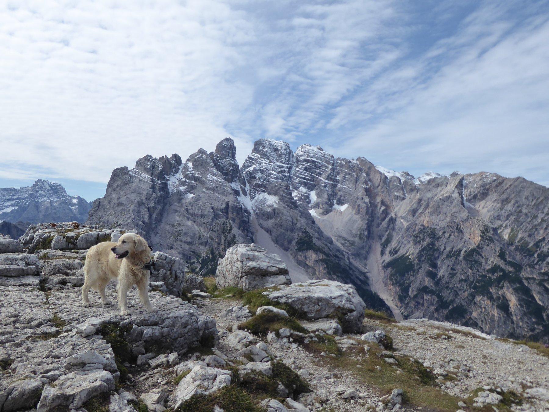 Piana (Monte) dalla Val di Landro, anello 2019-09-11