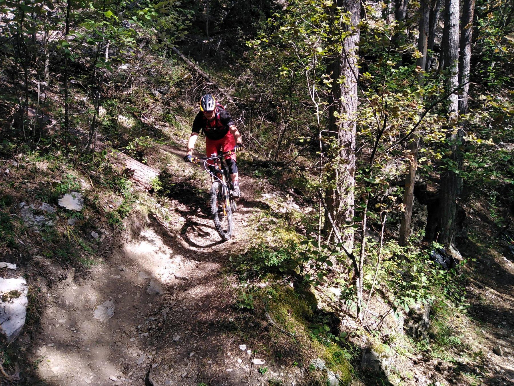 percorso stupendo nel bosco