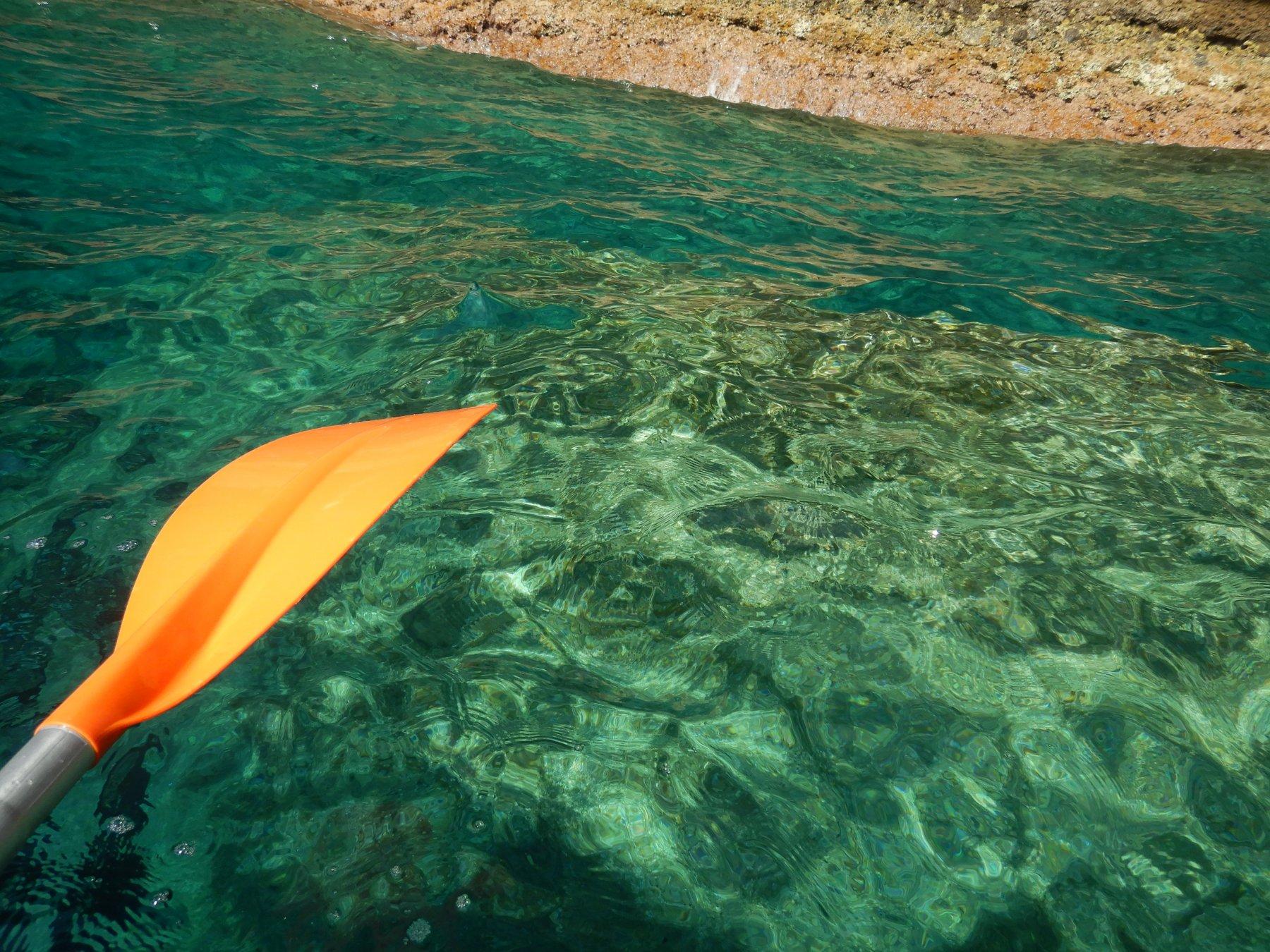 Colori mare di Liguria