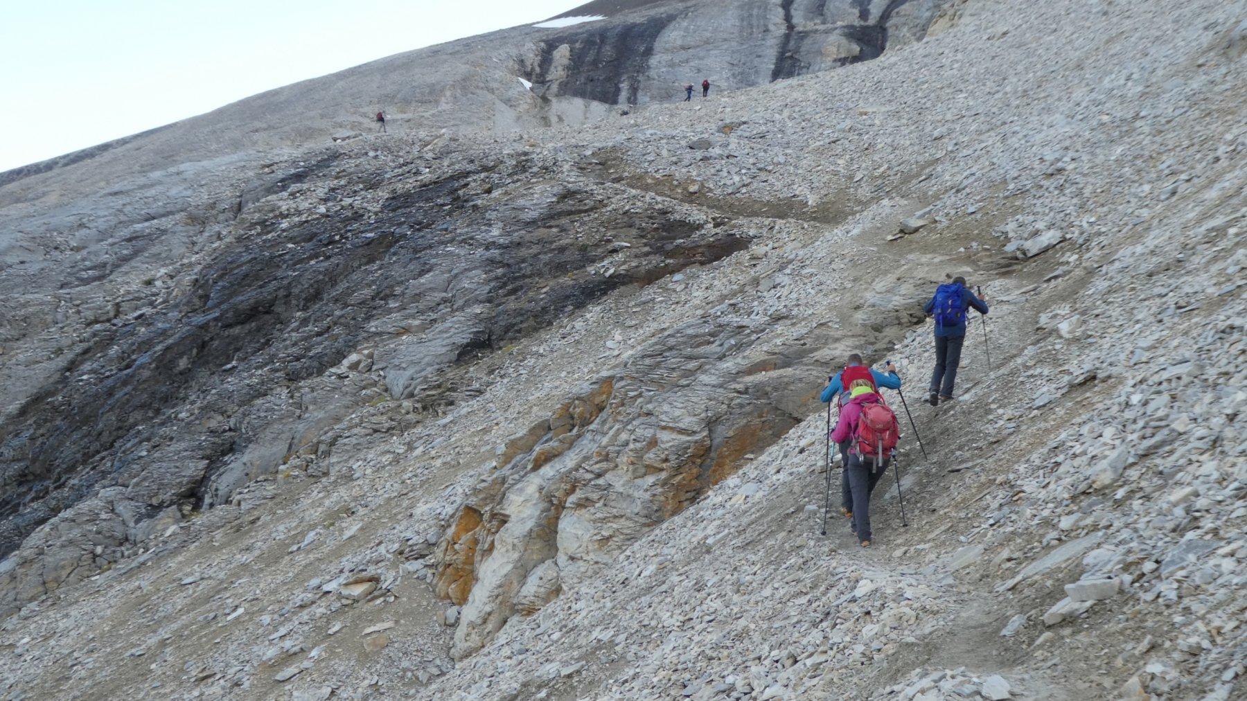 salendo le ripide chine detritiche del versante Ovest dei Barrhorn