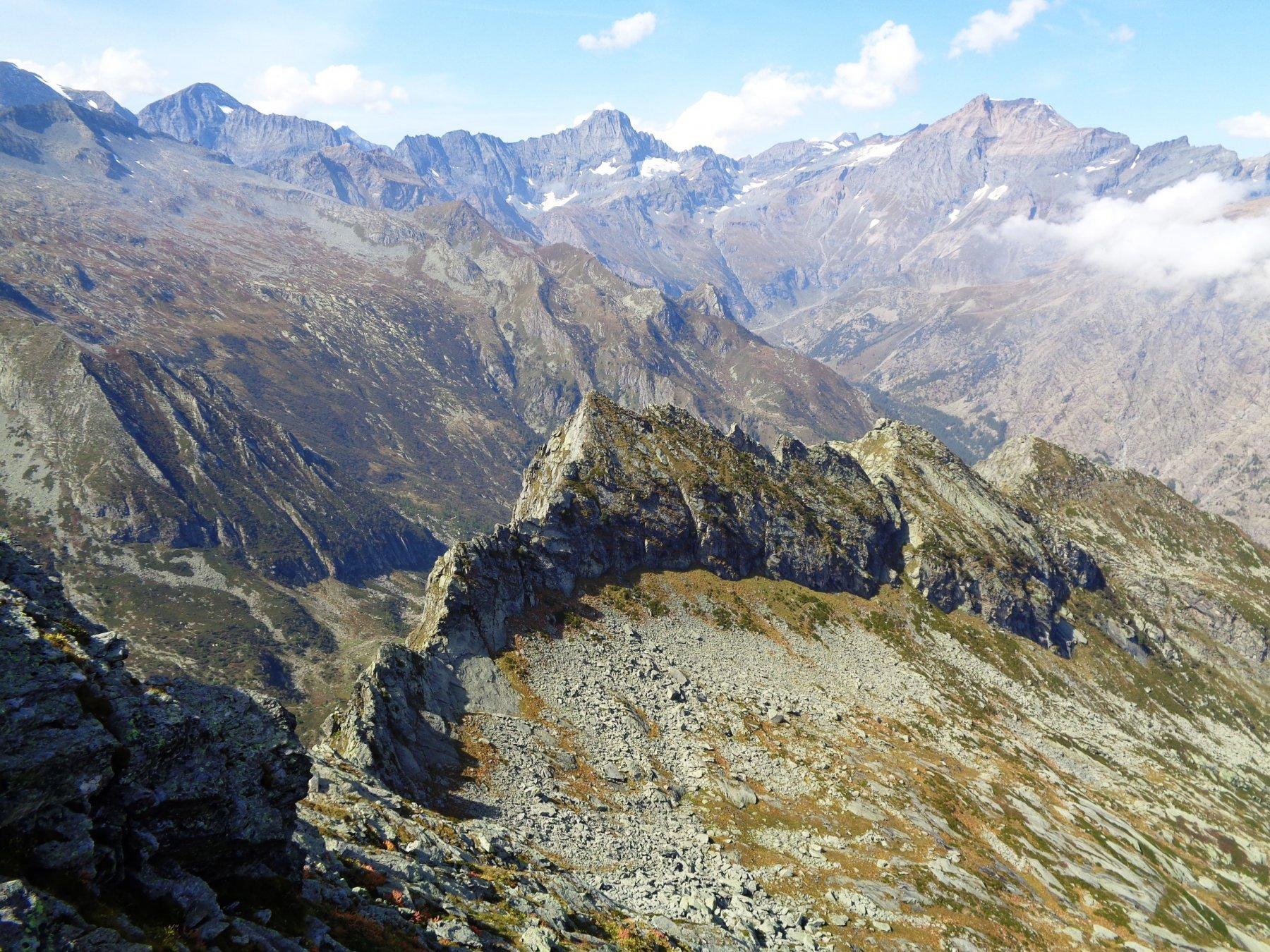 Panorama dalla cima: parte della cresta percorsa e Bessanese
