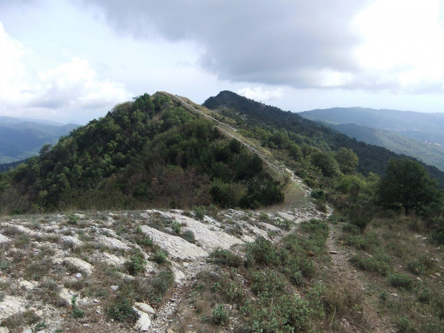 Formazioni rocciose sul crinale