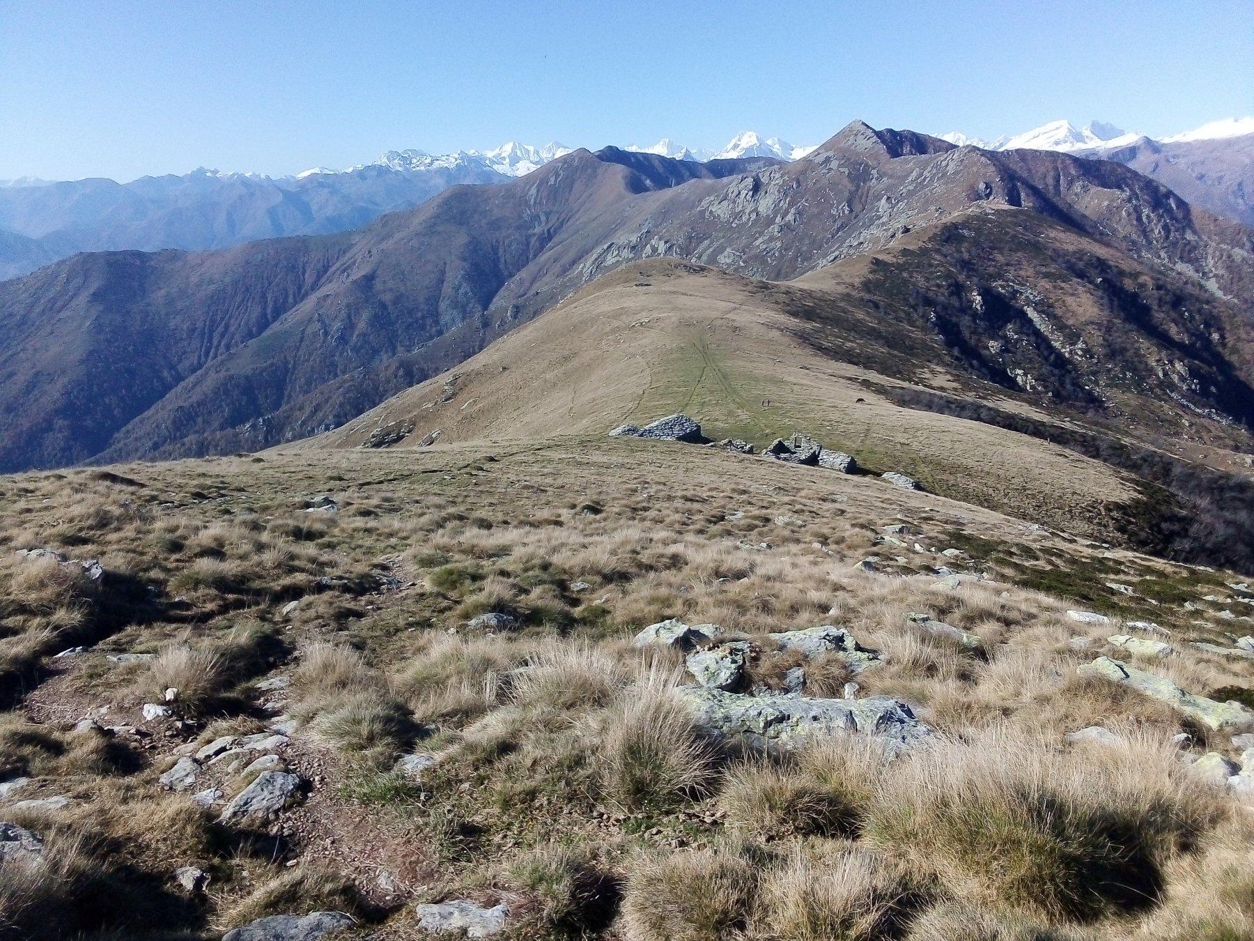 La cresta verso la cima dell'Angiolino e la Vaccarezza dal Soglio.