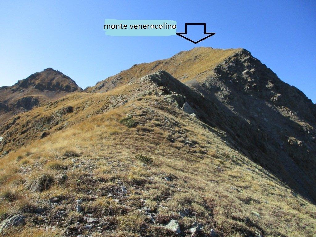 Venerocolo(Monte)da Ronco per il Monte Demignone e Venerocolino 2019-10-26