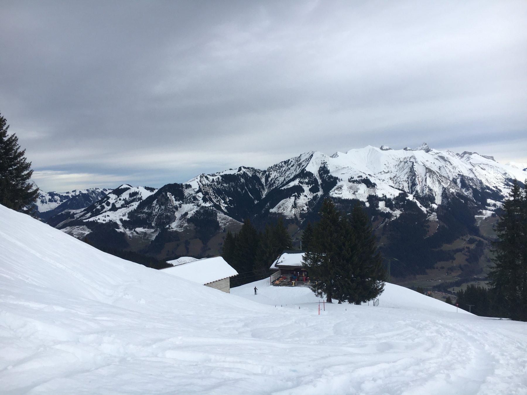 Chevreuils (Monts) da La Lécherette 2019-12-26