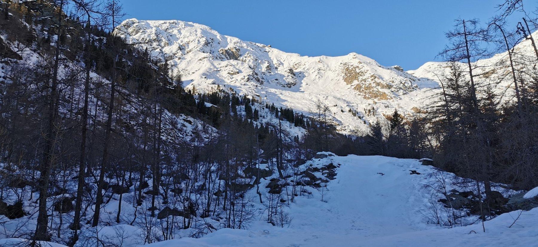 il tratto iniziale dell'ex-pista Busancano e il Monte Mucrone