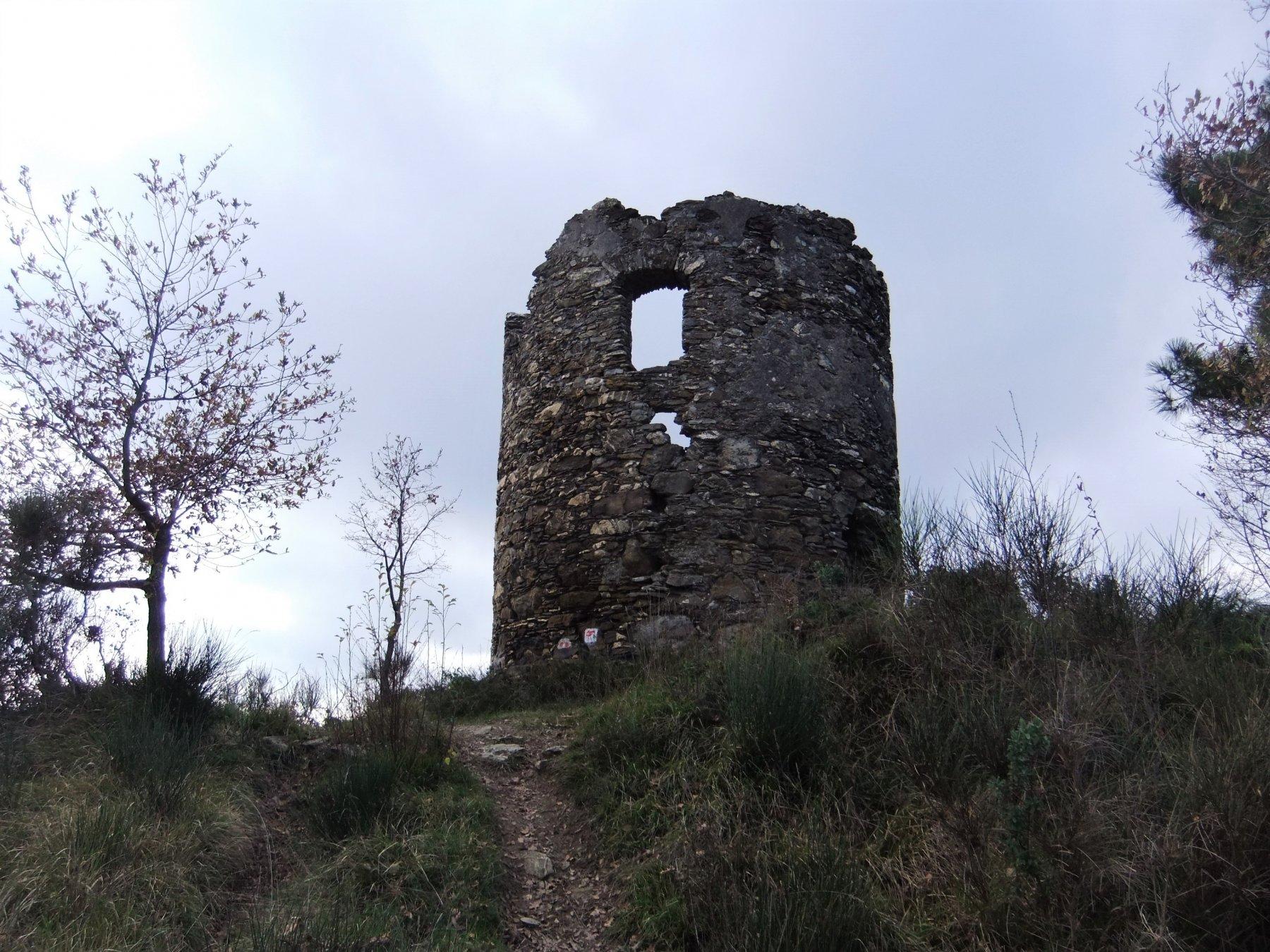 Alla Torre Pisana