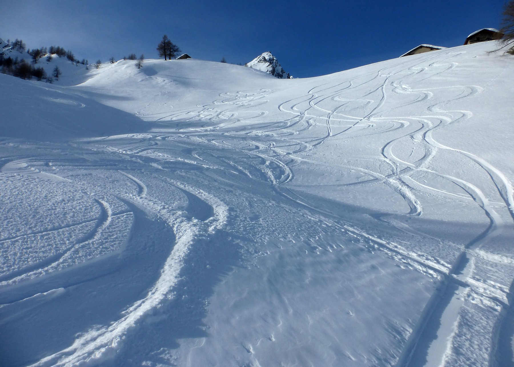 Qualità neve