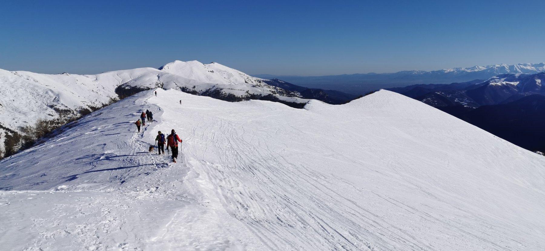 la cresta di collegamento tra la Punta dei Sarsassi e la Punta Ciarmetta
