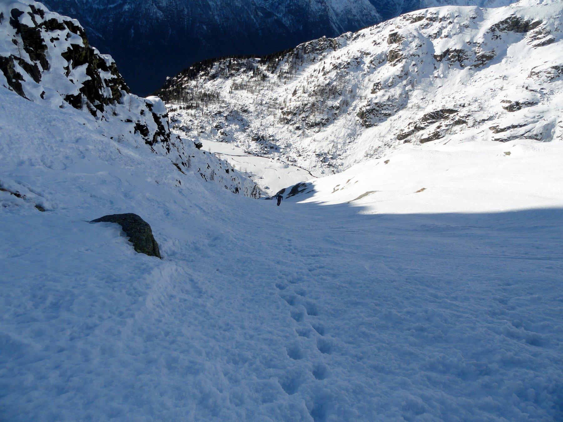 Gran Bernardè (Monte) Canale Ovest di Sx 2020-01-06