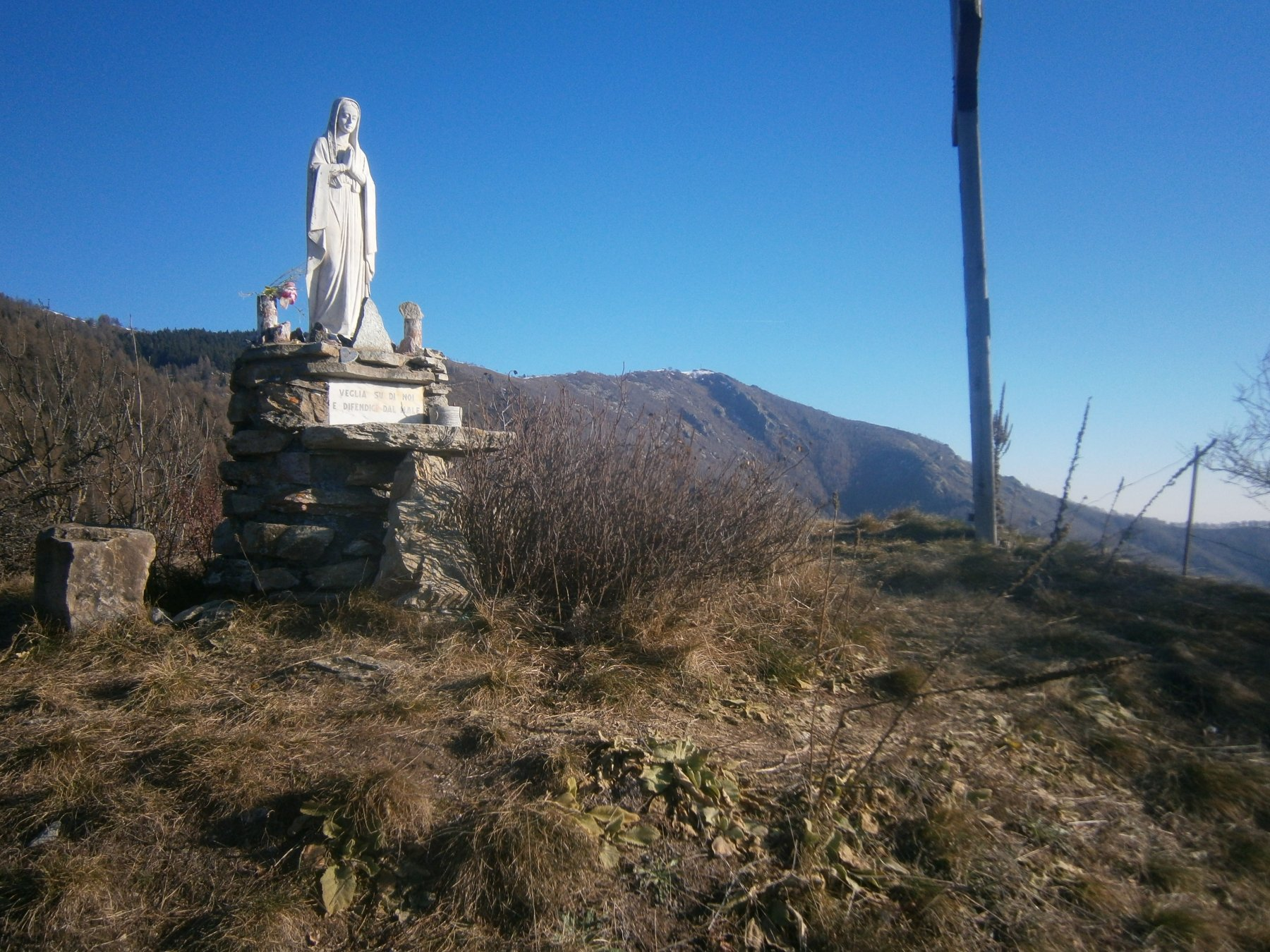 il san Bernardo dal Chast'Lass