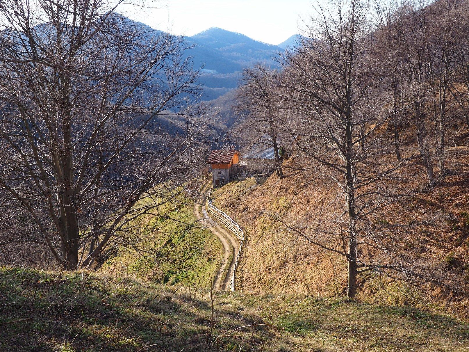 L'Alpe Lincé vista dal sentiero 639.