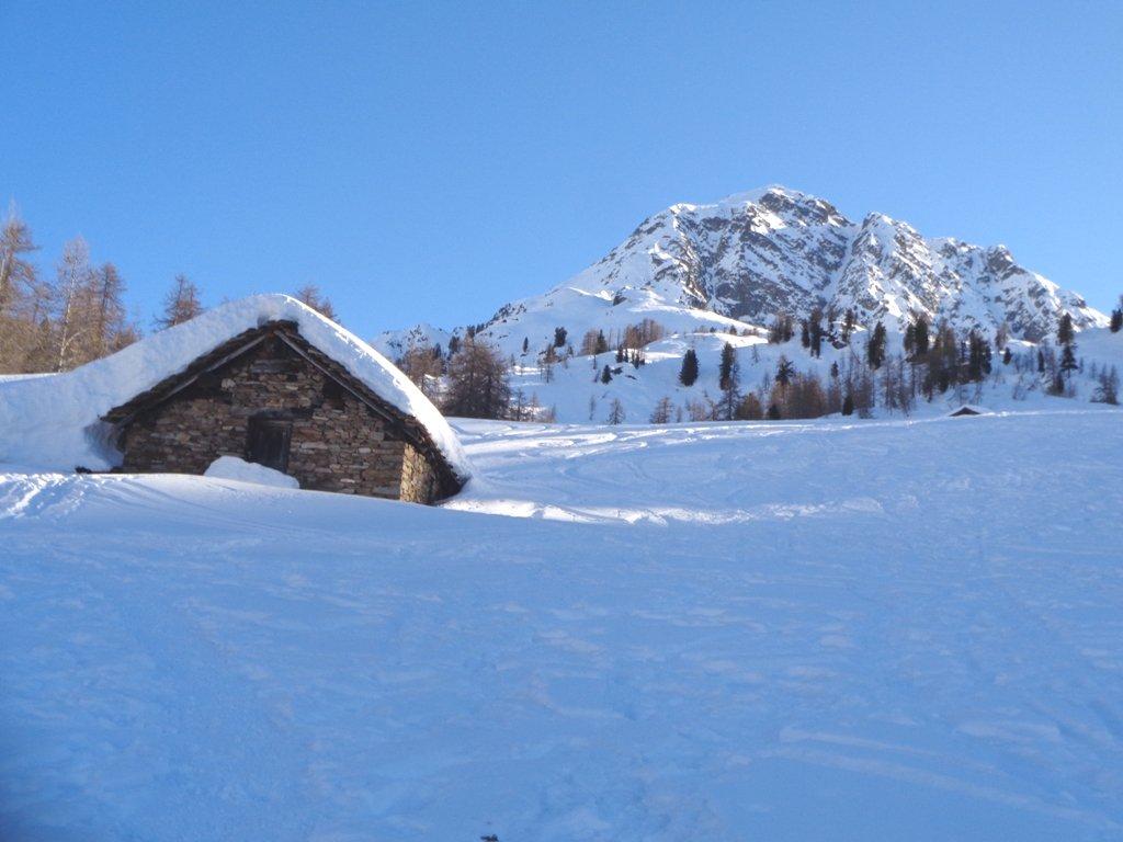 Alpe Crest