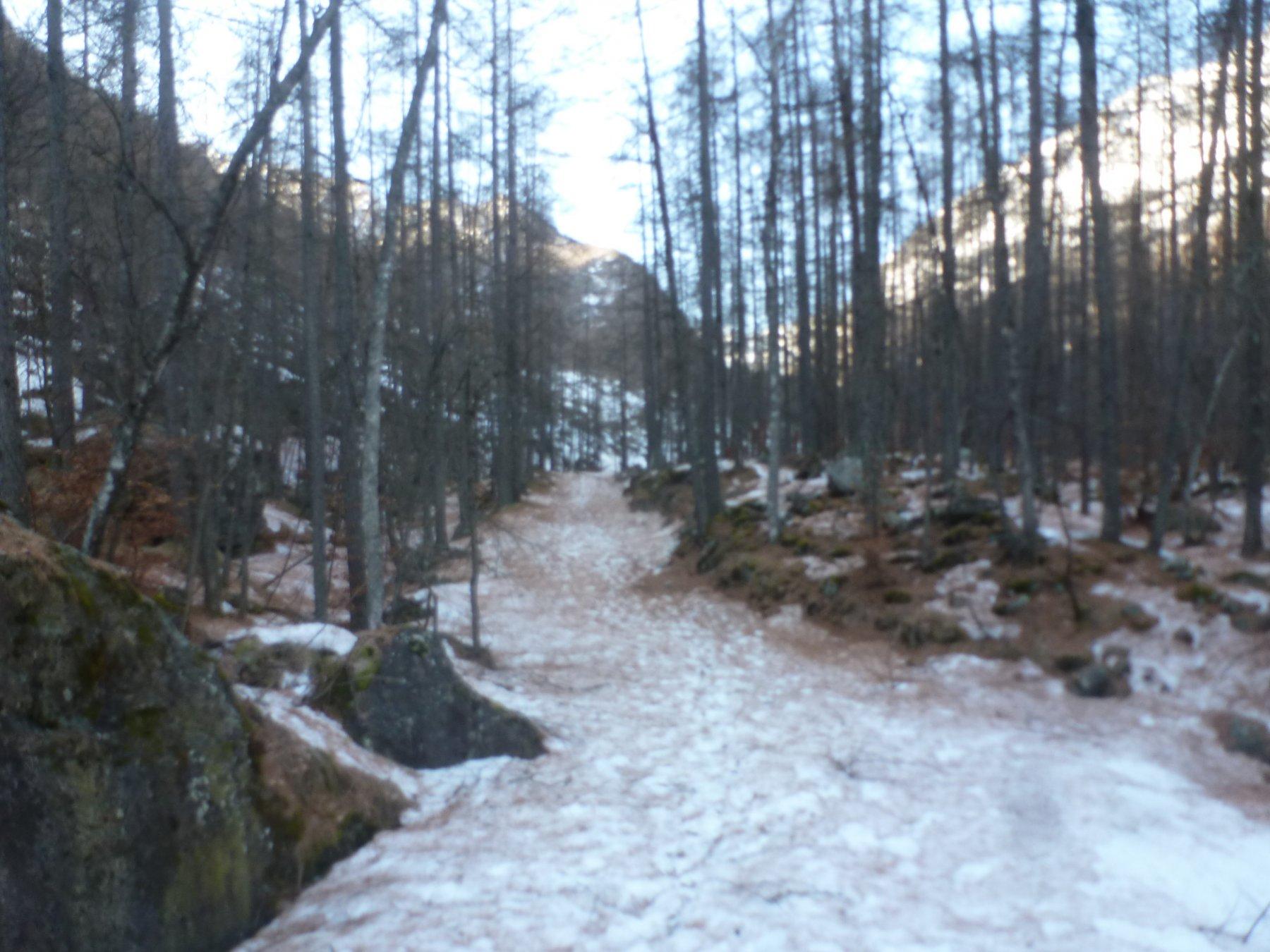 Mondrone (Frazione) da Ala di Stura per il Sentiero dell'Invers 2020-01-14