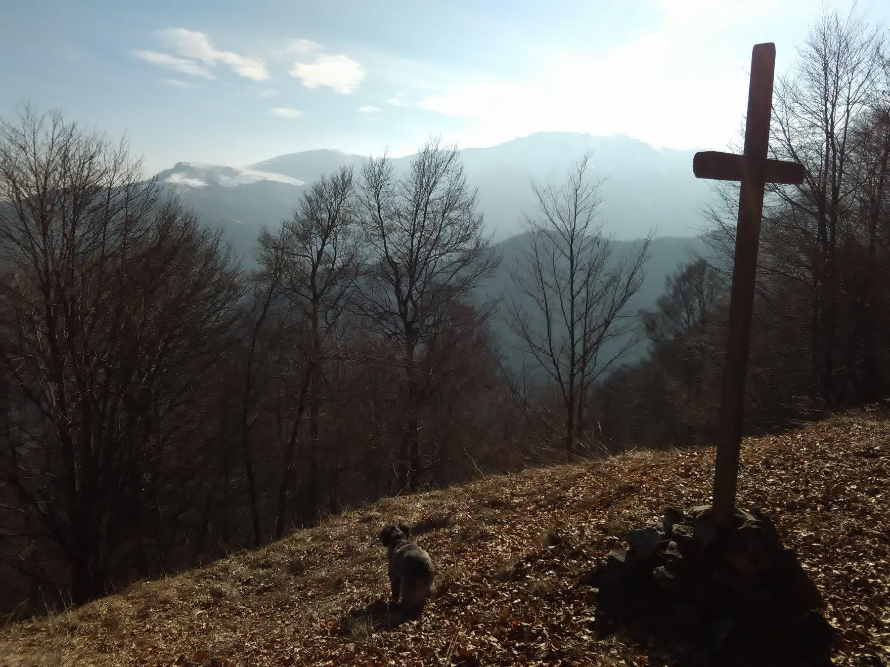 Dal Monte Ruera verso l'Alpe