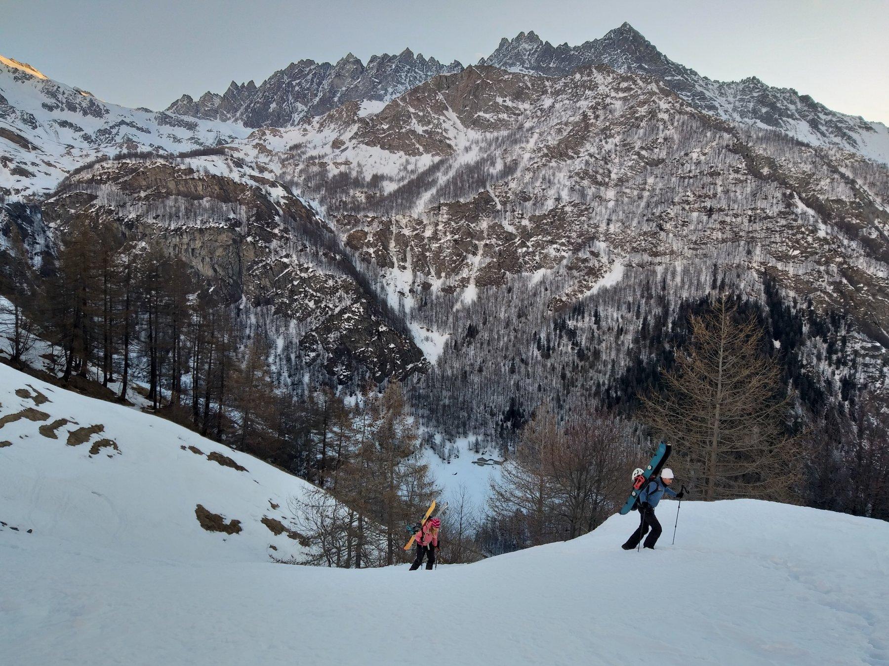 In uscita dal bosco con sfondo cresta del mont morion