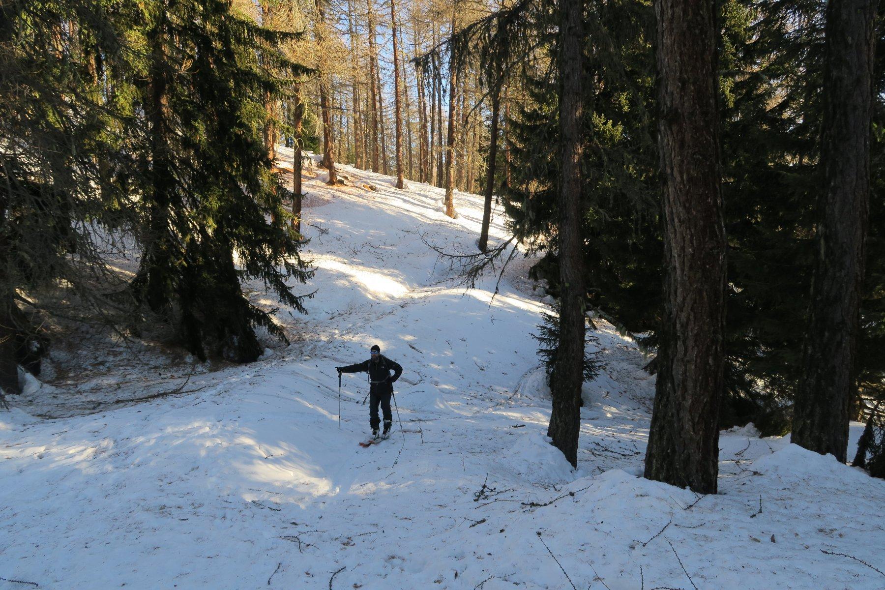 nel bosco dove sono presenti alcuni tratti di neve farinosa