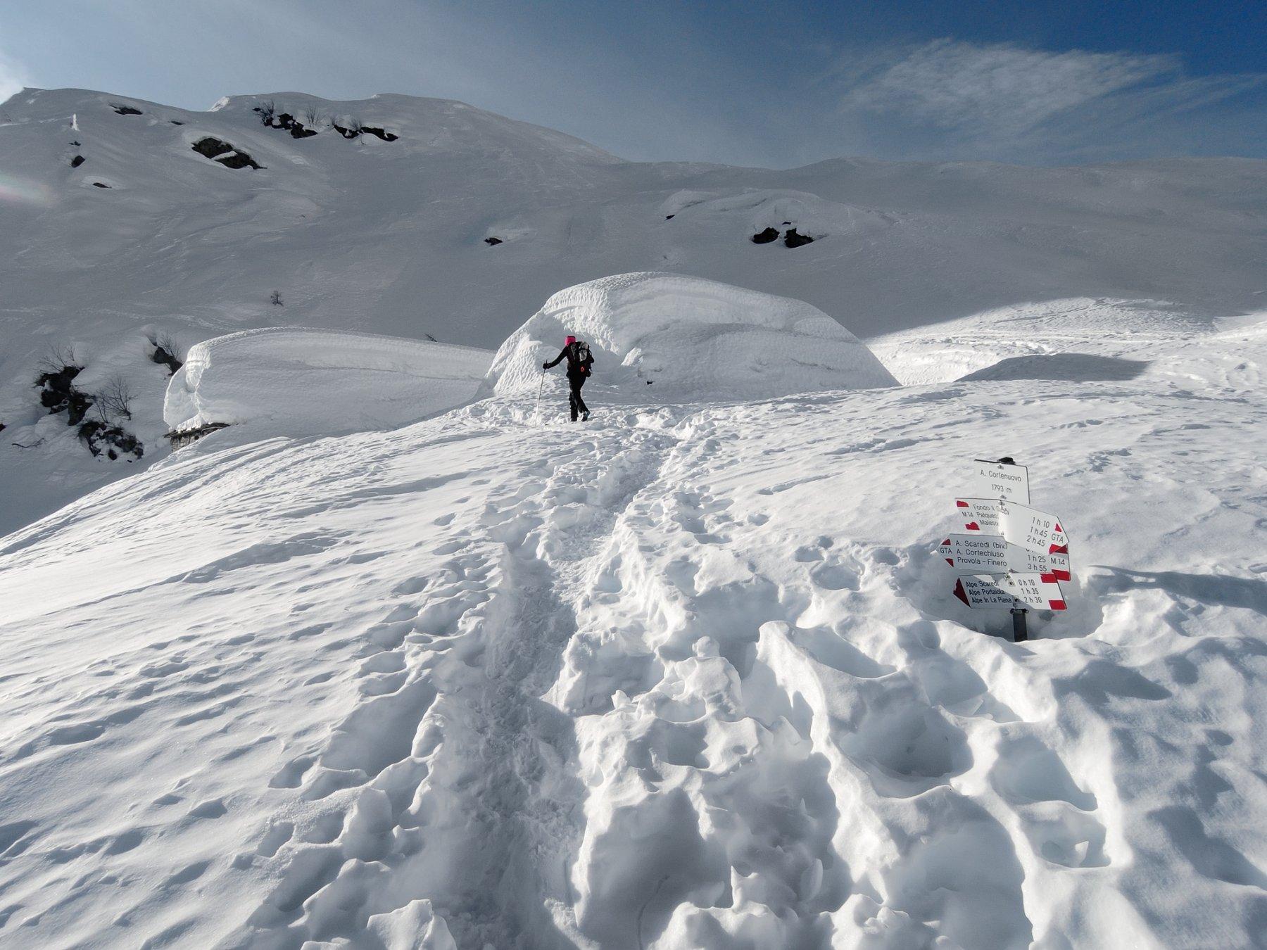DSCN6614 Cortenuovo sotto la neve