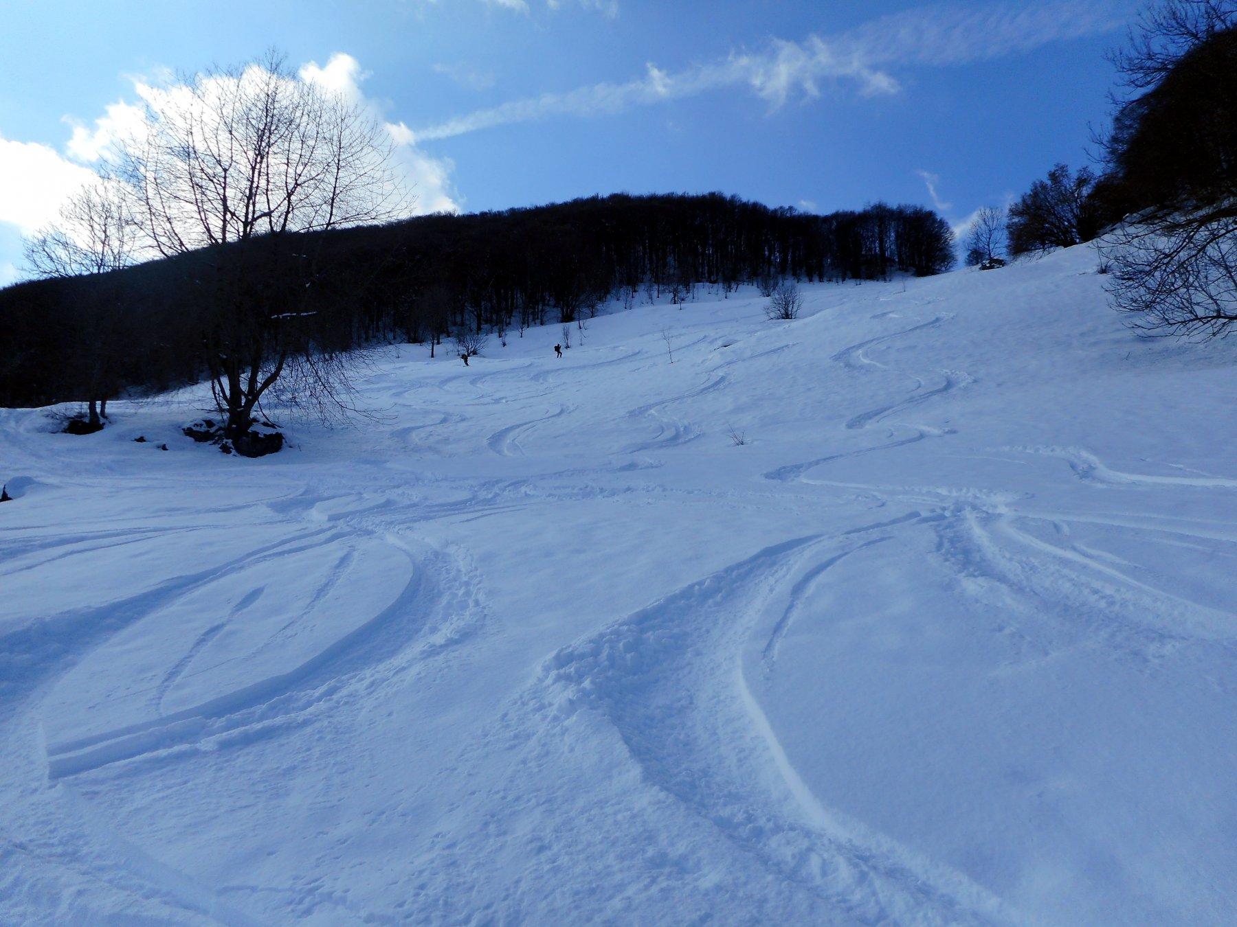 neve di qualità