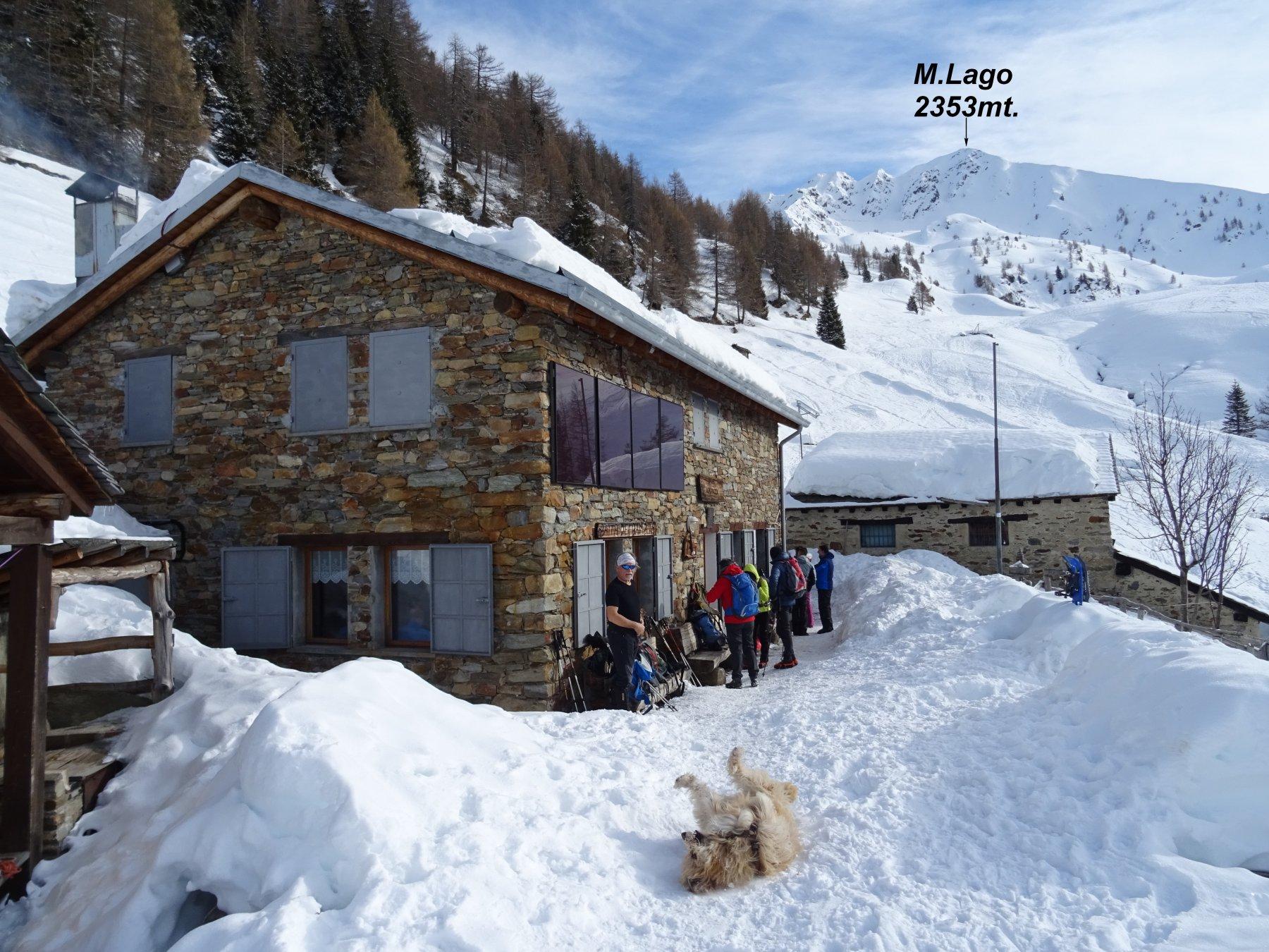 Il M.Lago visto dal Rif. Alpe Piazza1835mt.