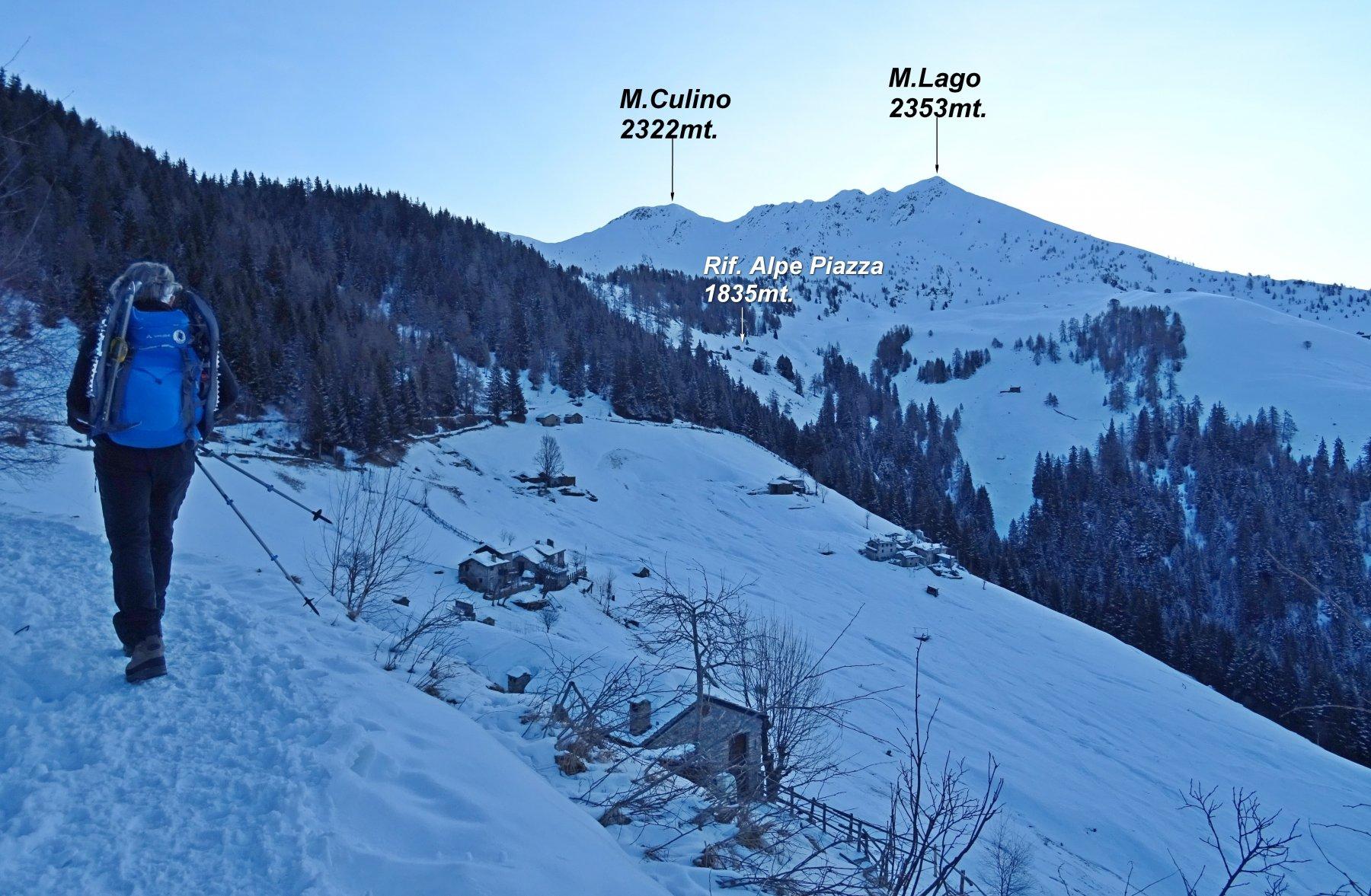 Panorama sul M.Lago dall'Alpe Grassa.