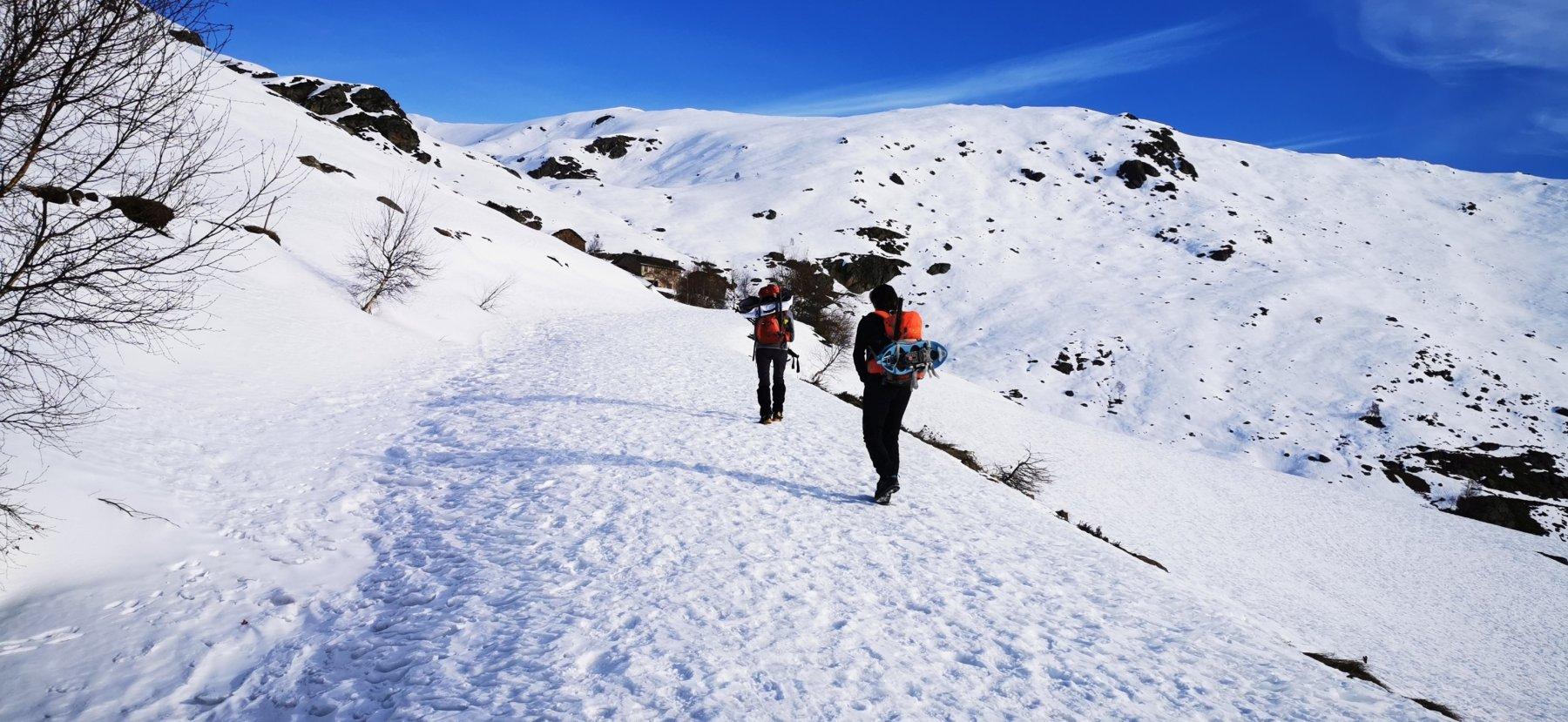 salendo nel Vallone del Viona a quota 1650 m