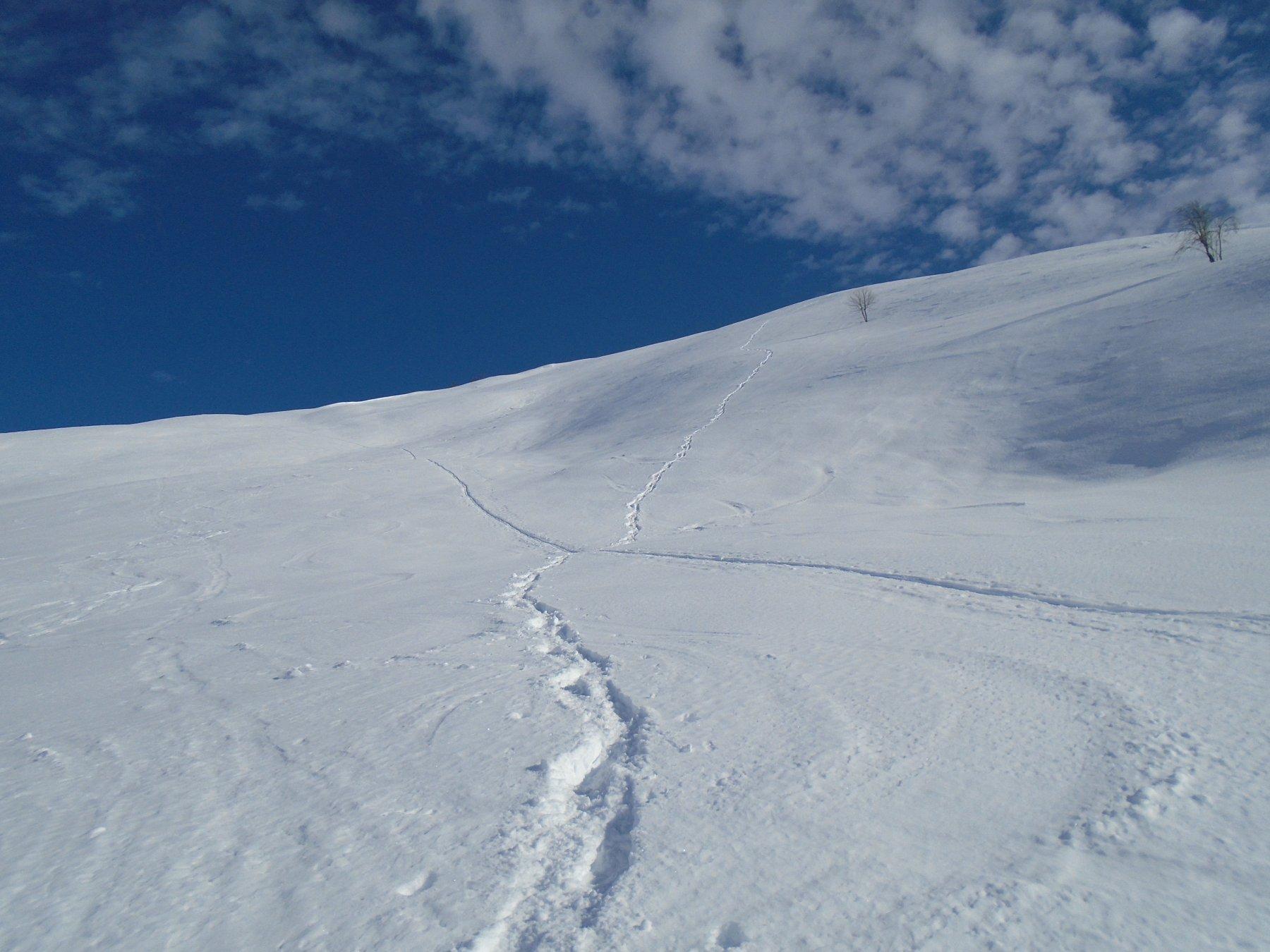 Neve spettacolare sui pendii sotto il Gardun
