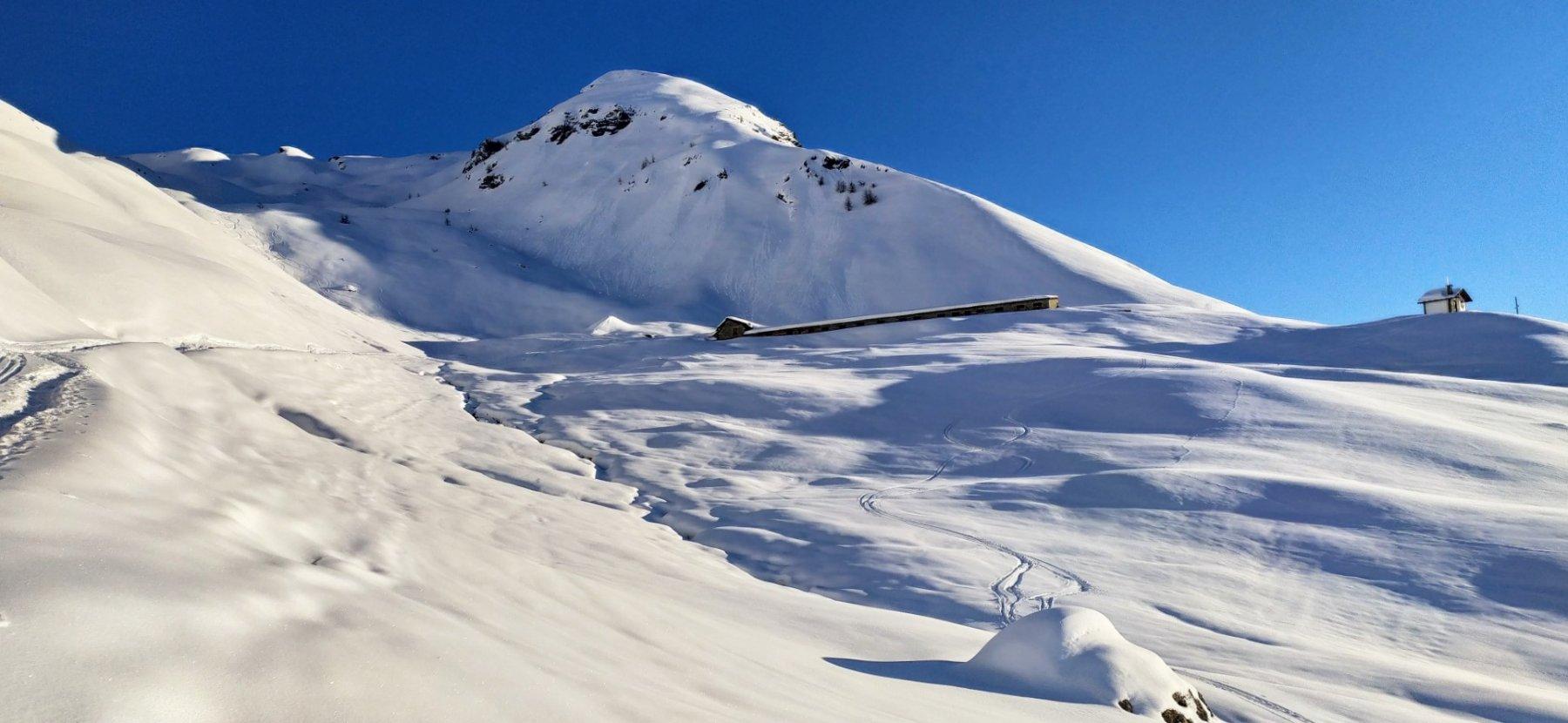Facciabella (Monte) quota 2619 m da Mandriou 2020-01-31