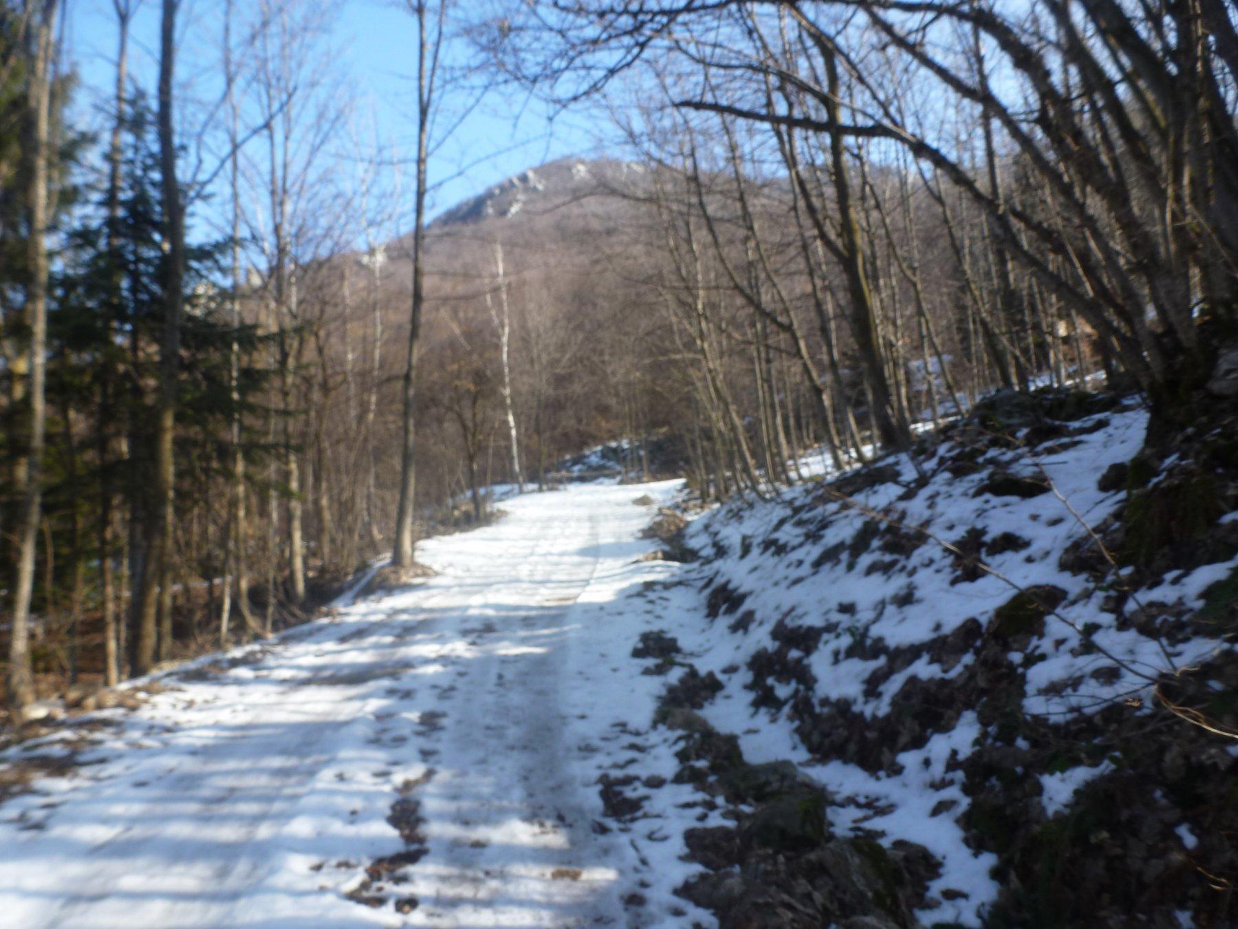 strada del Pino e cima Fornelli
