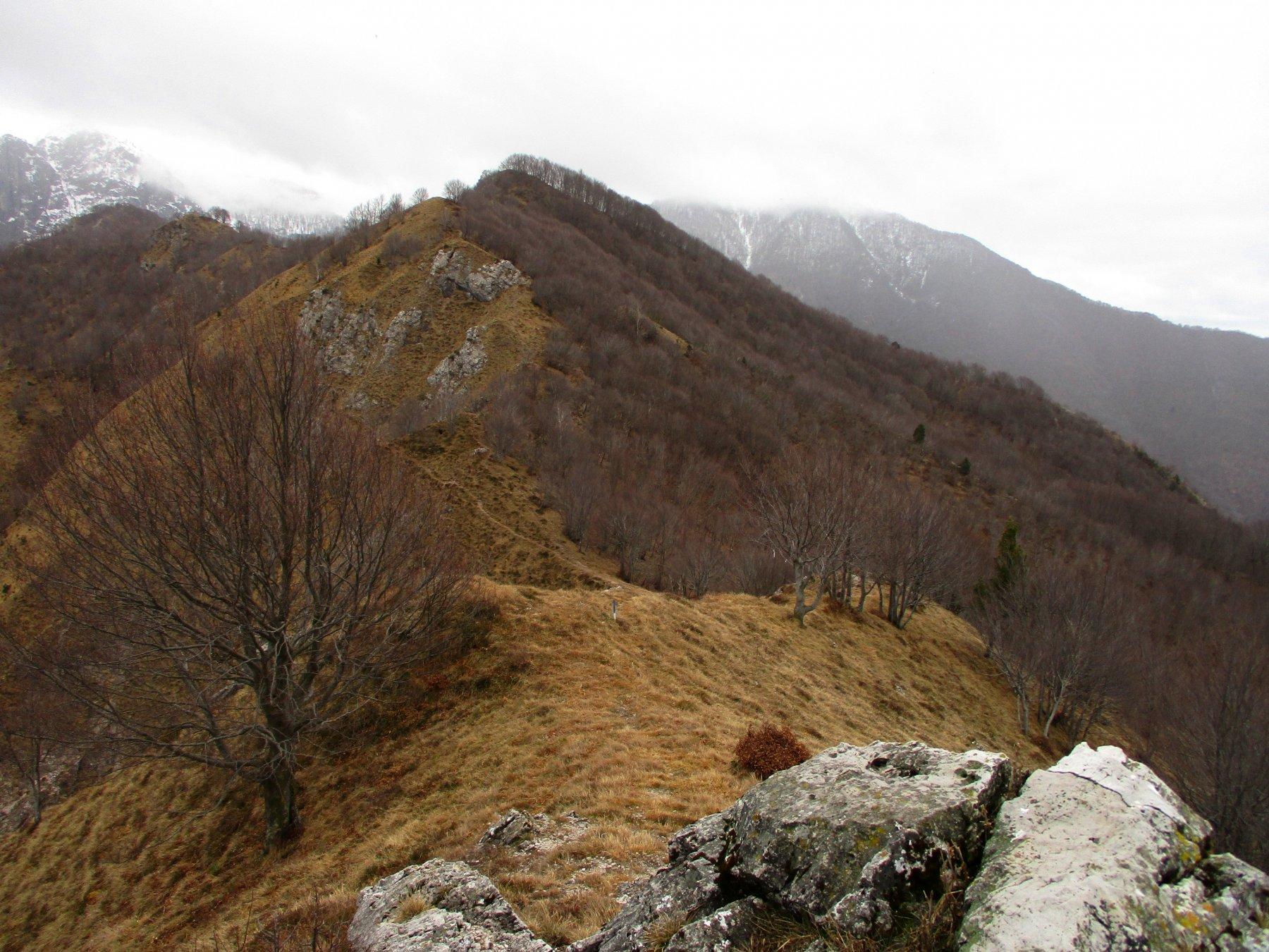 cima Zirlaca dal monte Porta