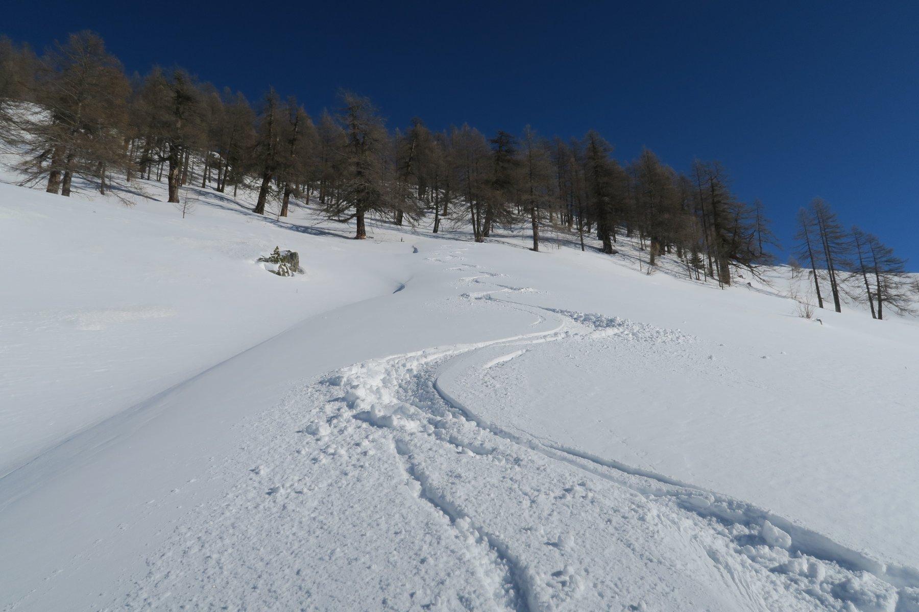 anche più in basso ottima neve