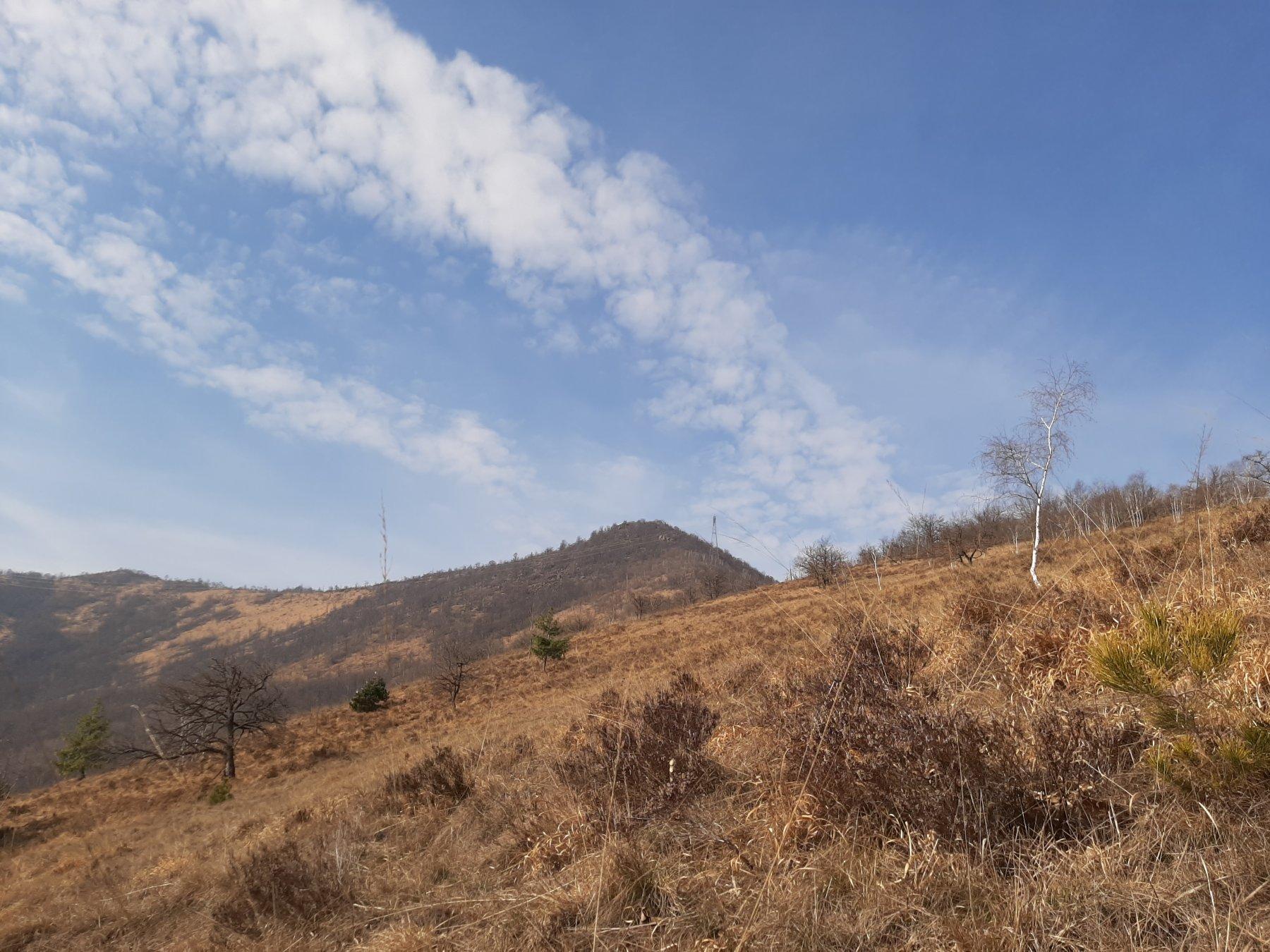 Il Monte Bernard